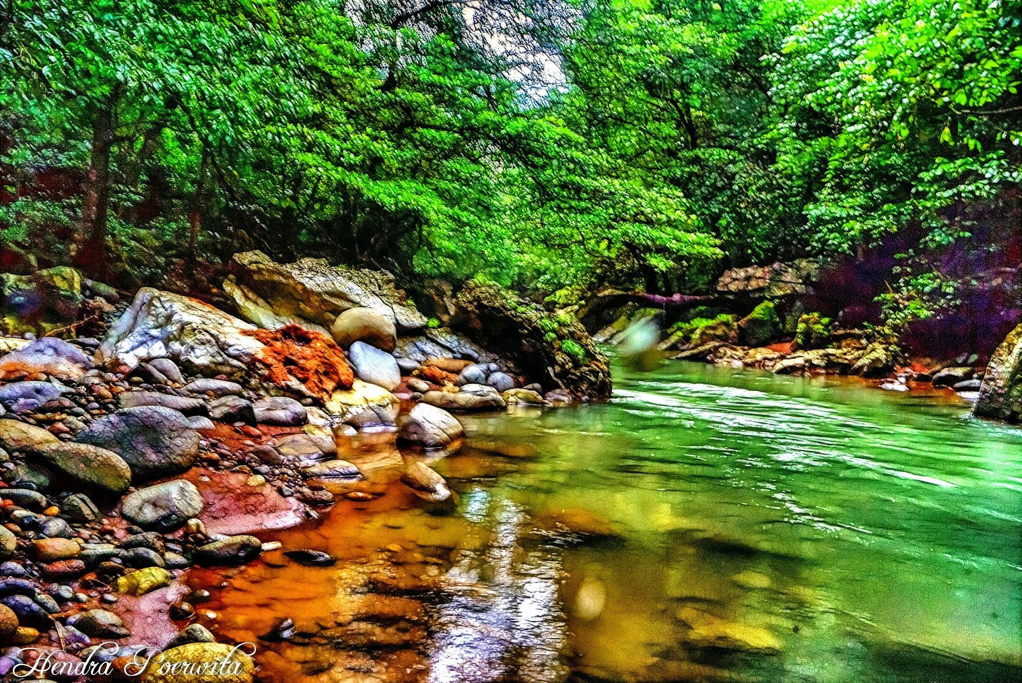FRACTAL RIVER by hendra.poerwita