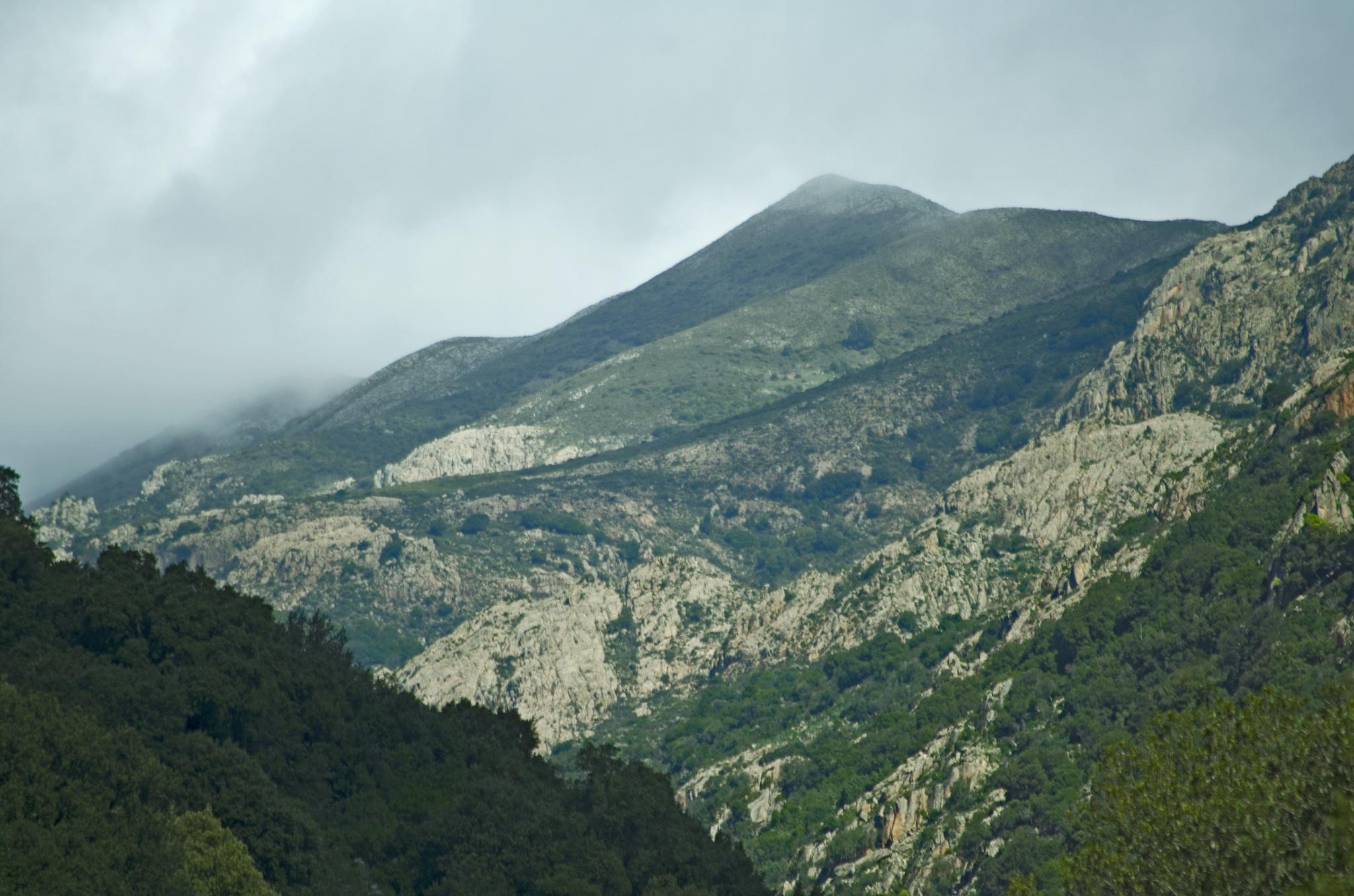 Le montagne di Villacidro  by elena.dessi