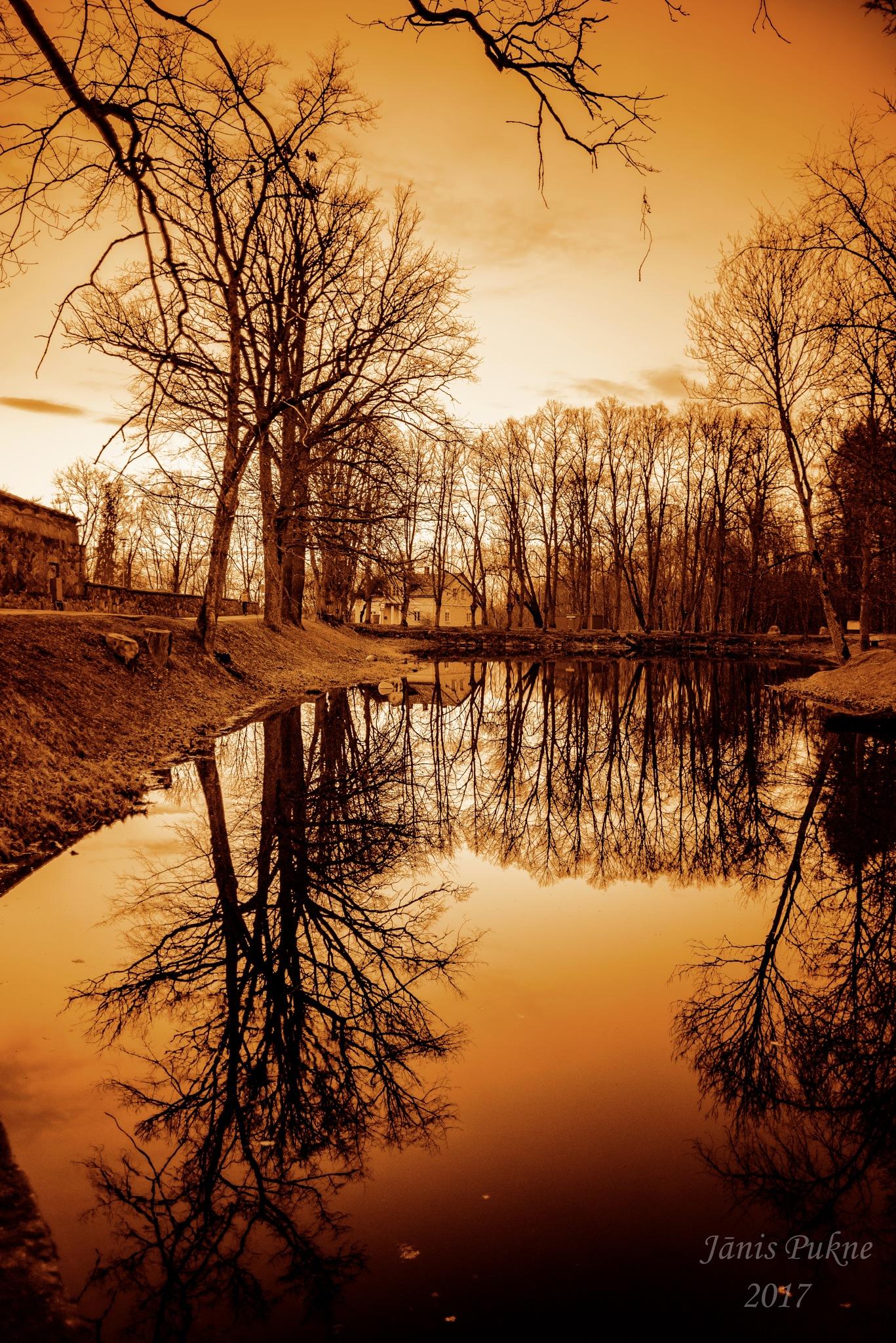 Twilight. by Janis Pukne
