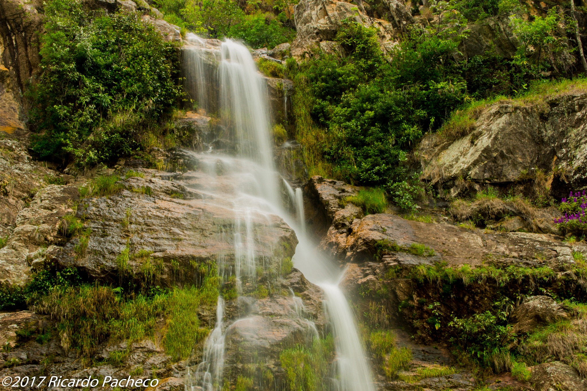 Capão Fôrro Waterfall by Ricardo Pacheco