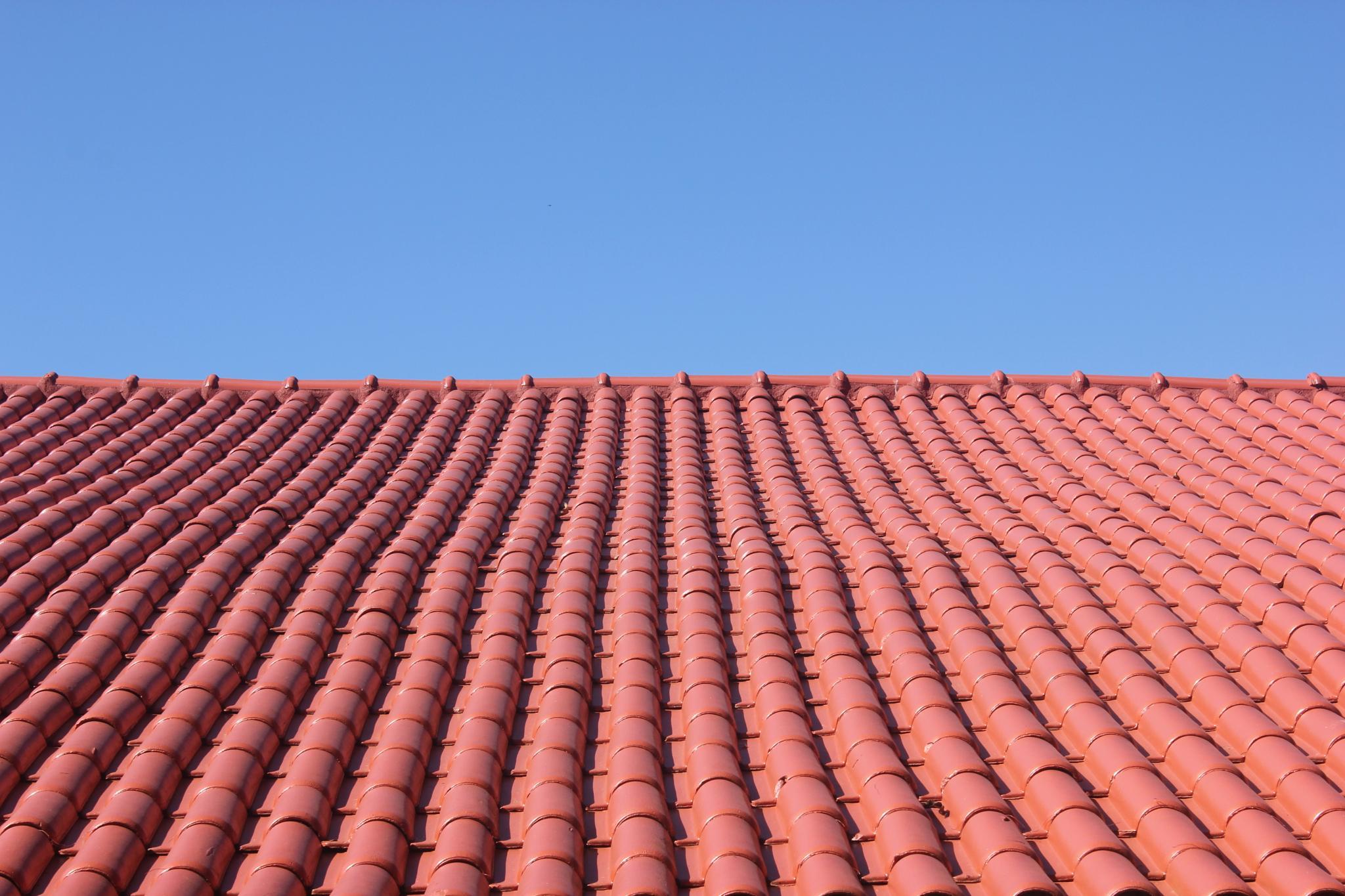 Roof by Ricardo Pacheco