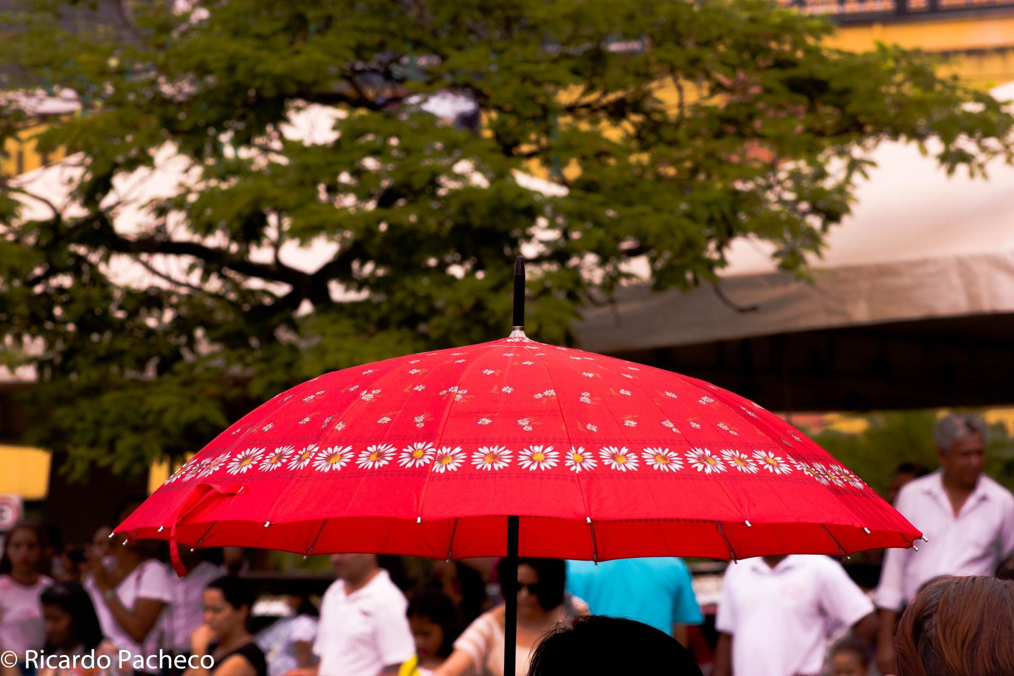 umbrella by Ricardo Pacheco