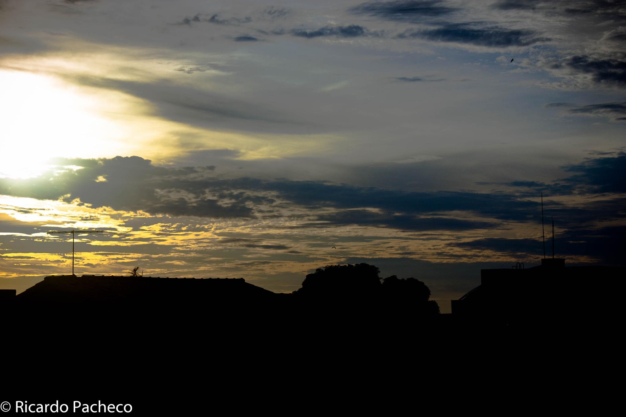 Skyscape by Ricardo Pacheco