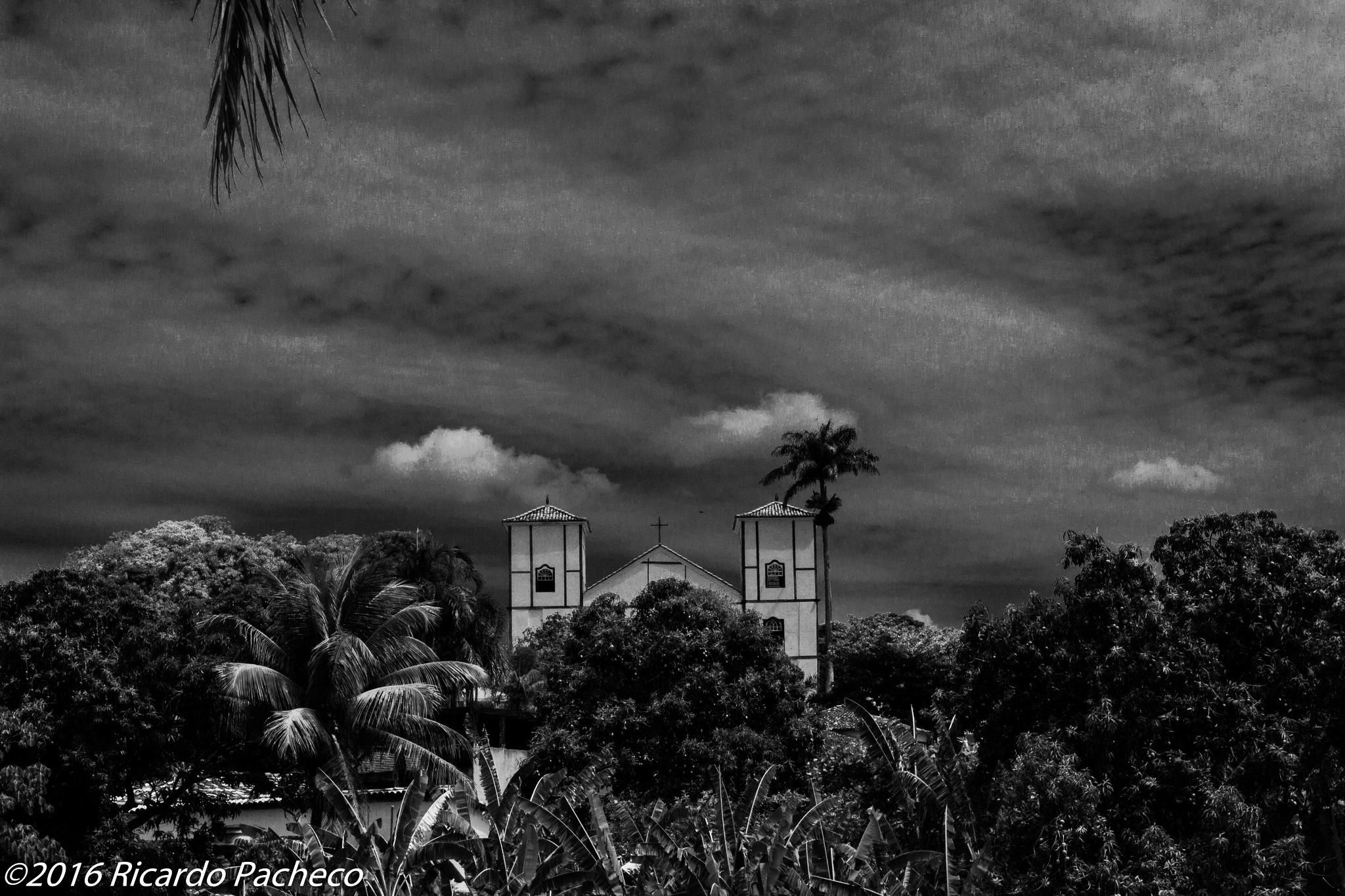 Untitled by Ricardo Pacheco