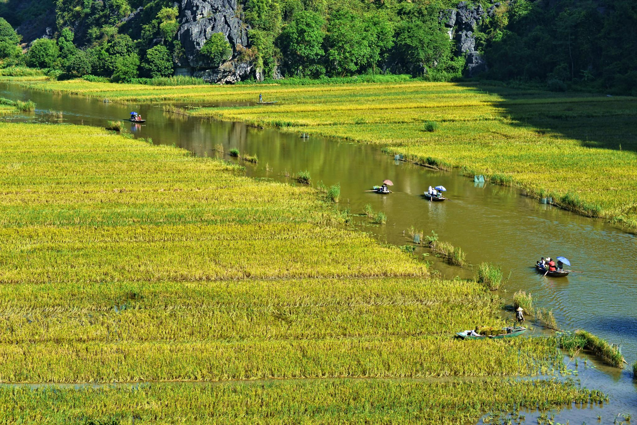 Tam Coc by Hung Quang Ngo