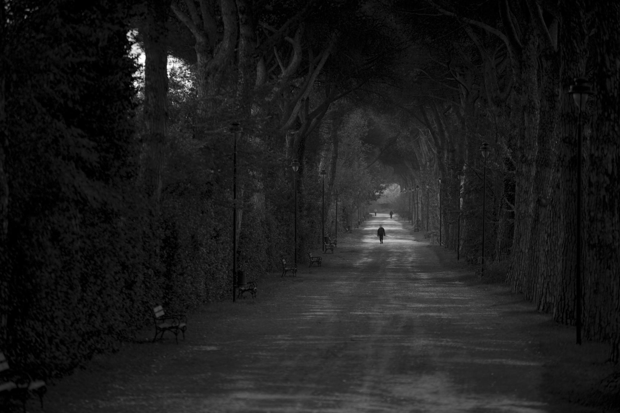 passeggiando alle cascine by GabrieleCollini