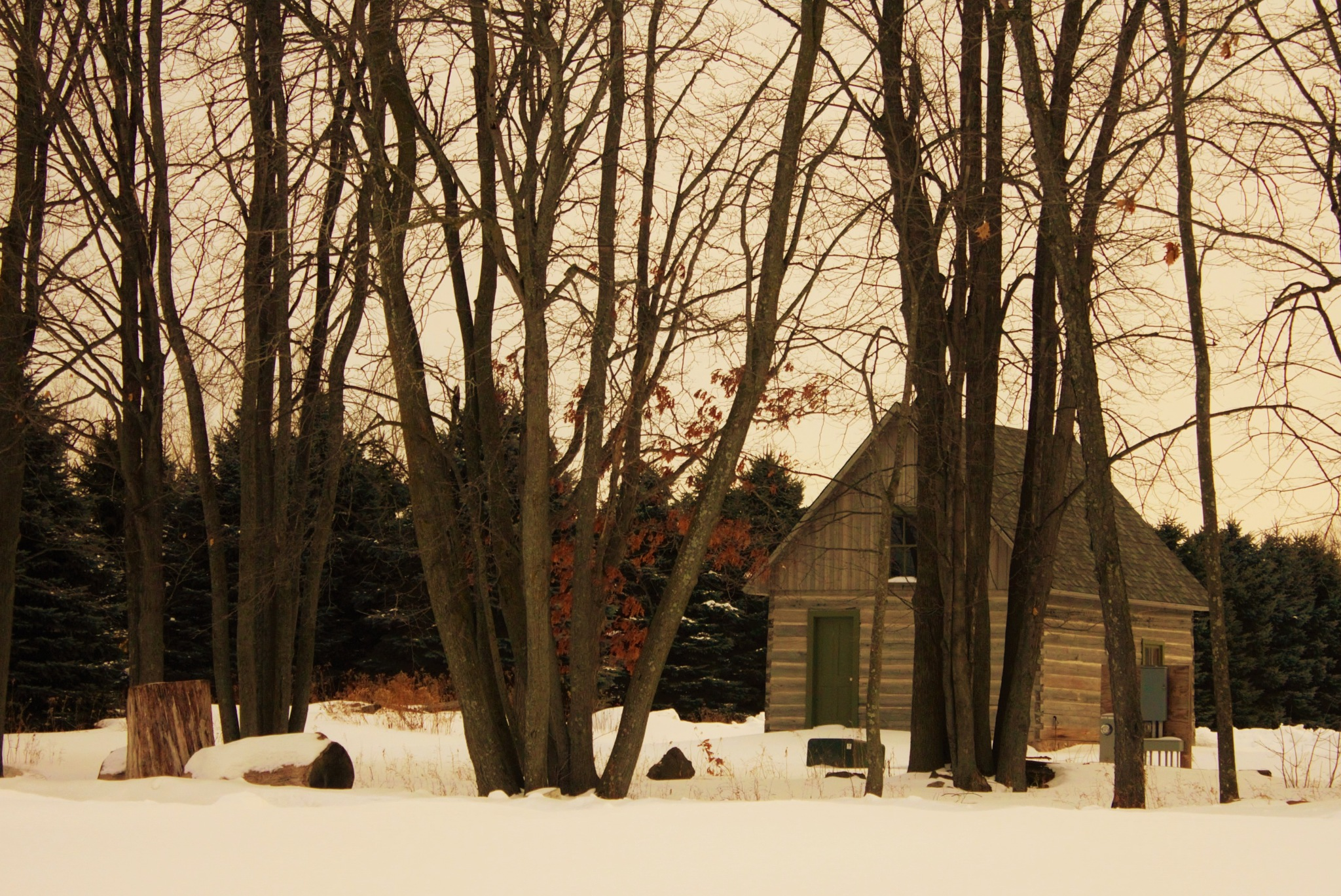 Cottage in the snowy forest by autumn.acres.1