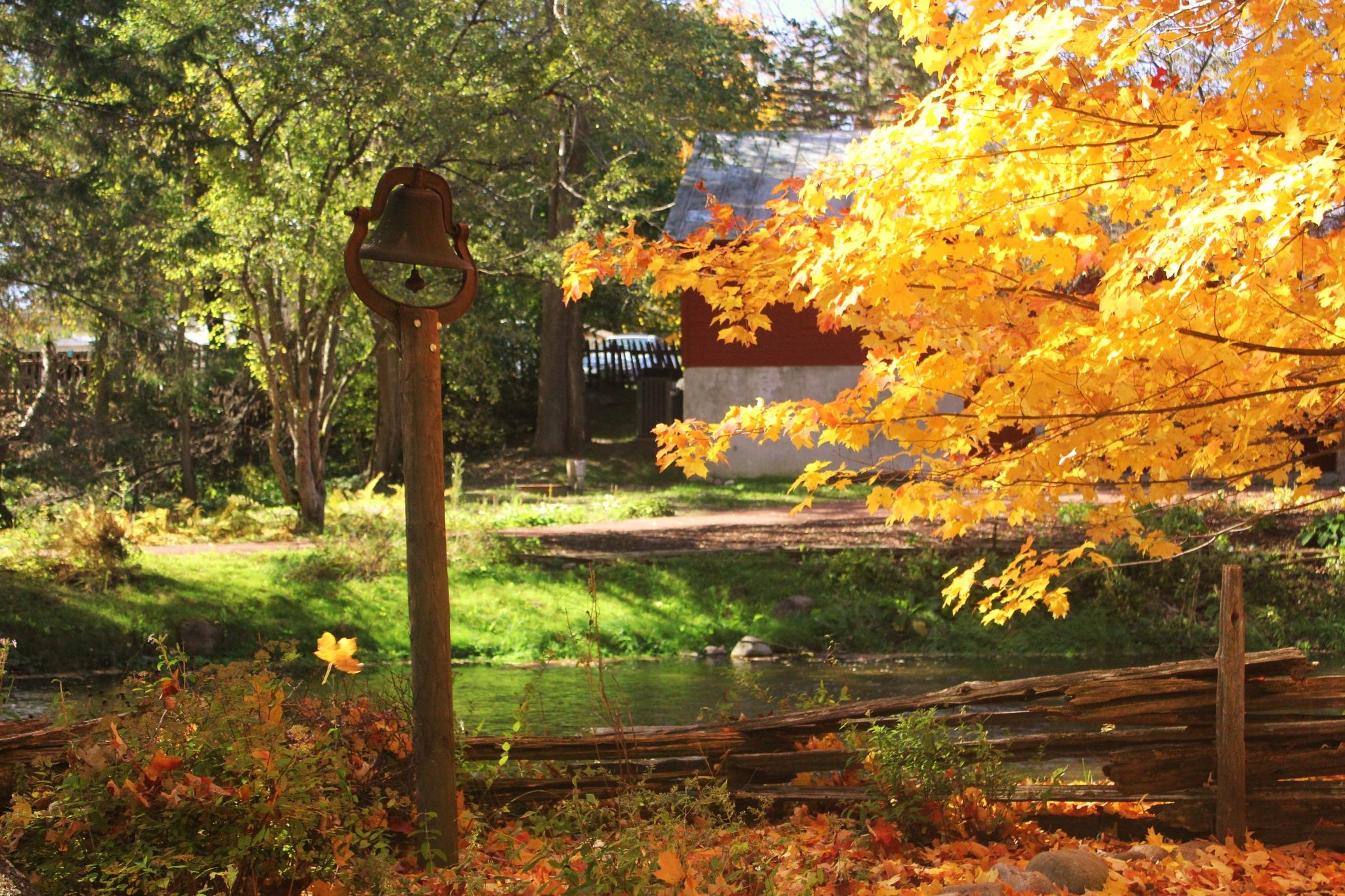 Autumn Bells by autumn.acres.1