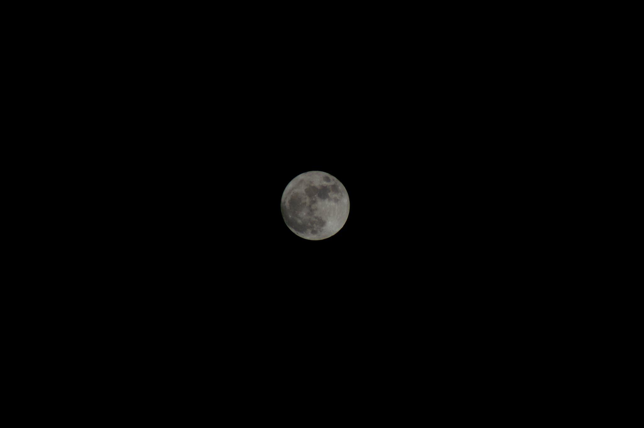 Moon by Richard Nagy