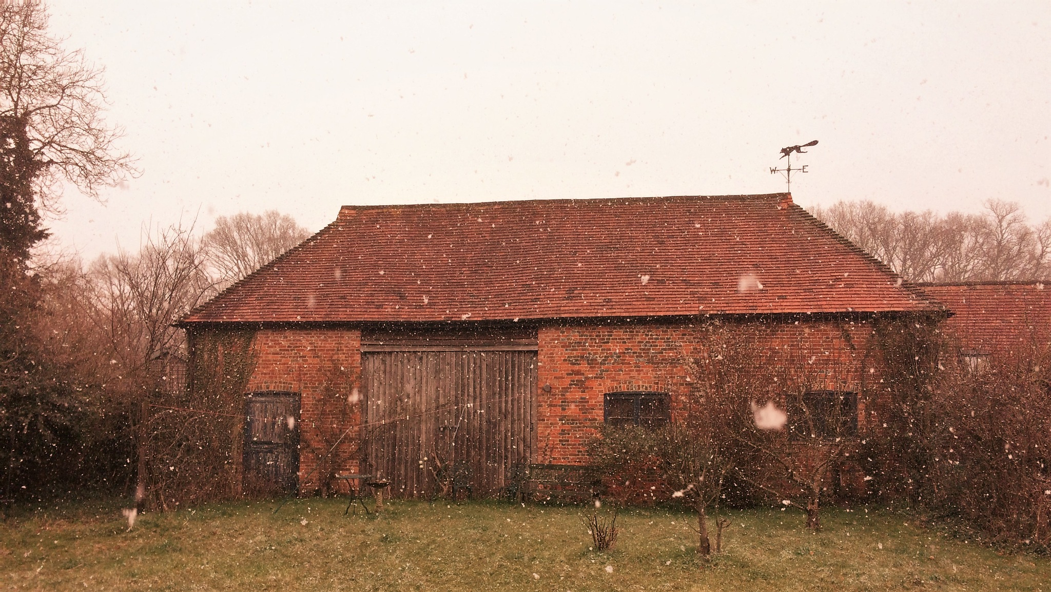 Snowing In Hampshire by geoff richards