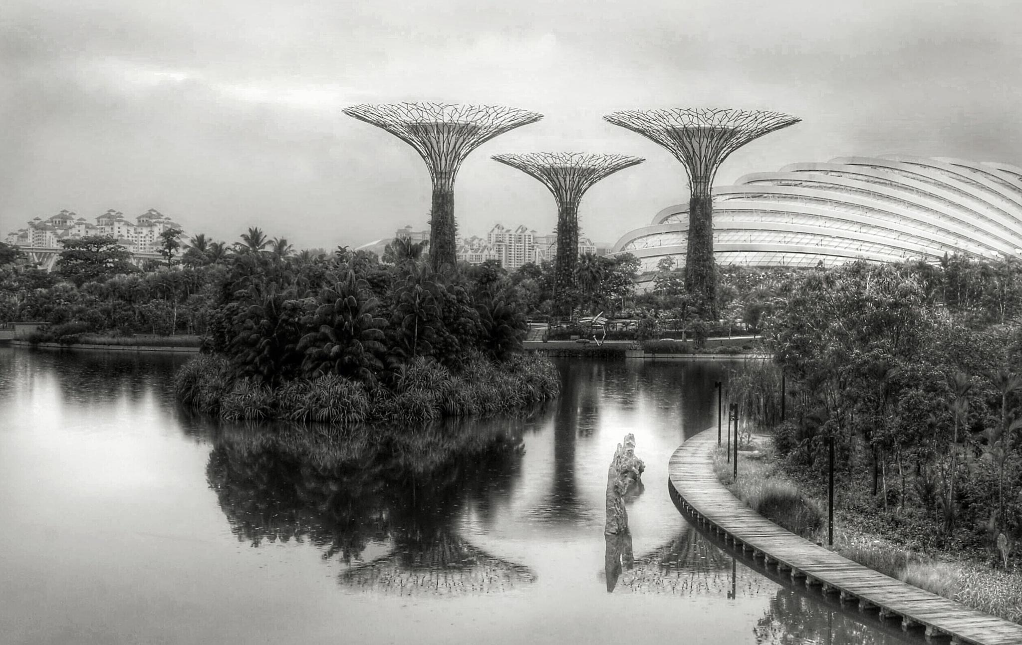 Marina Bay Garden by Ming_Bear