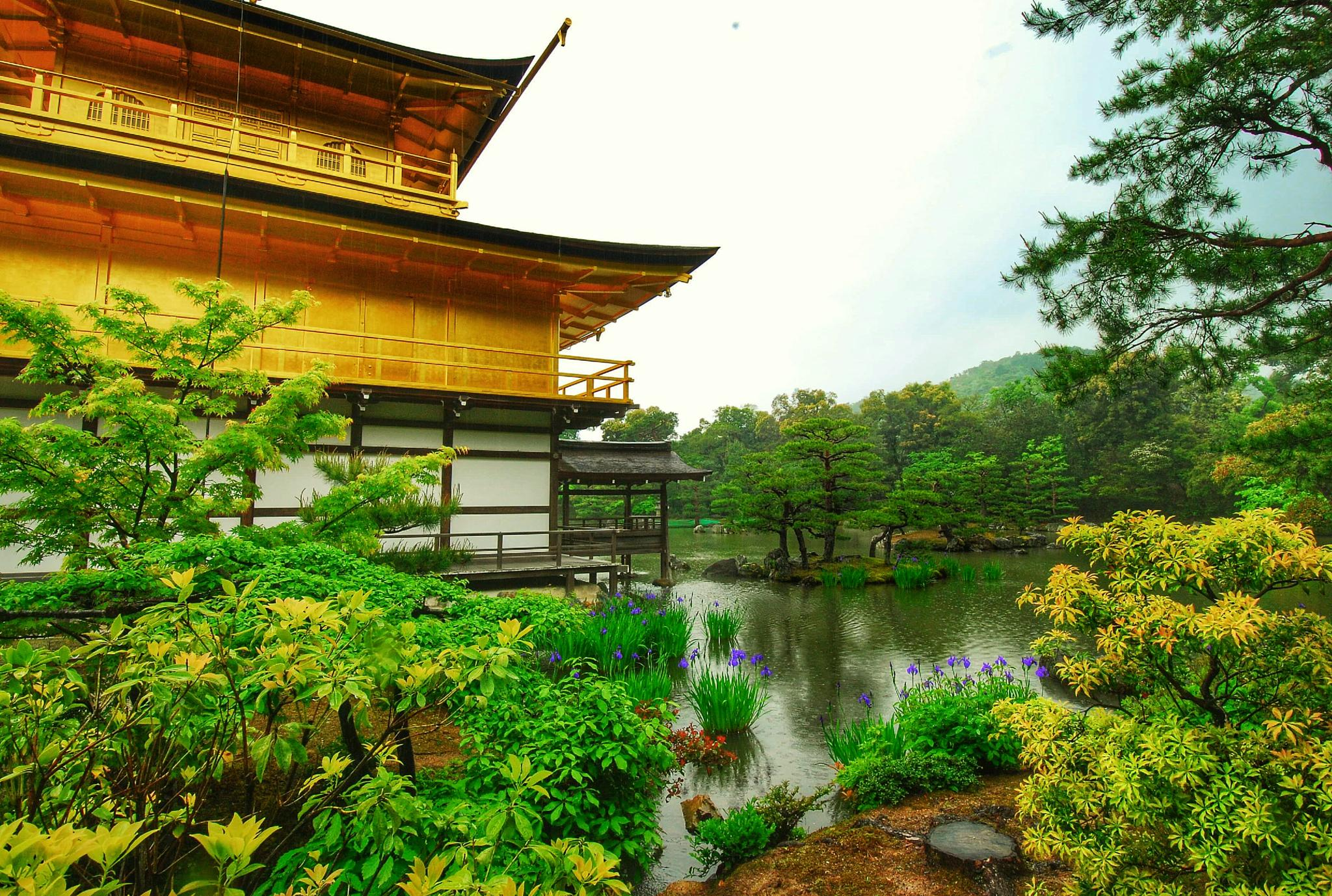 The Golden Pavilion Temple by Ming_Bear