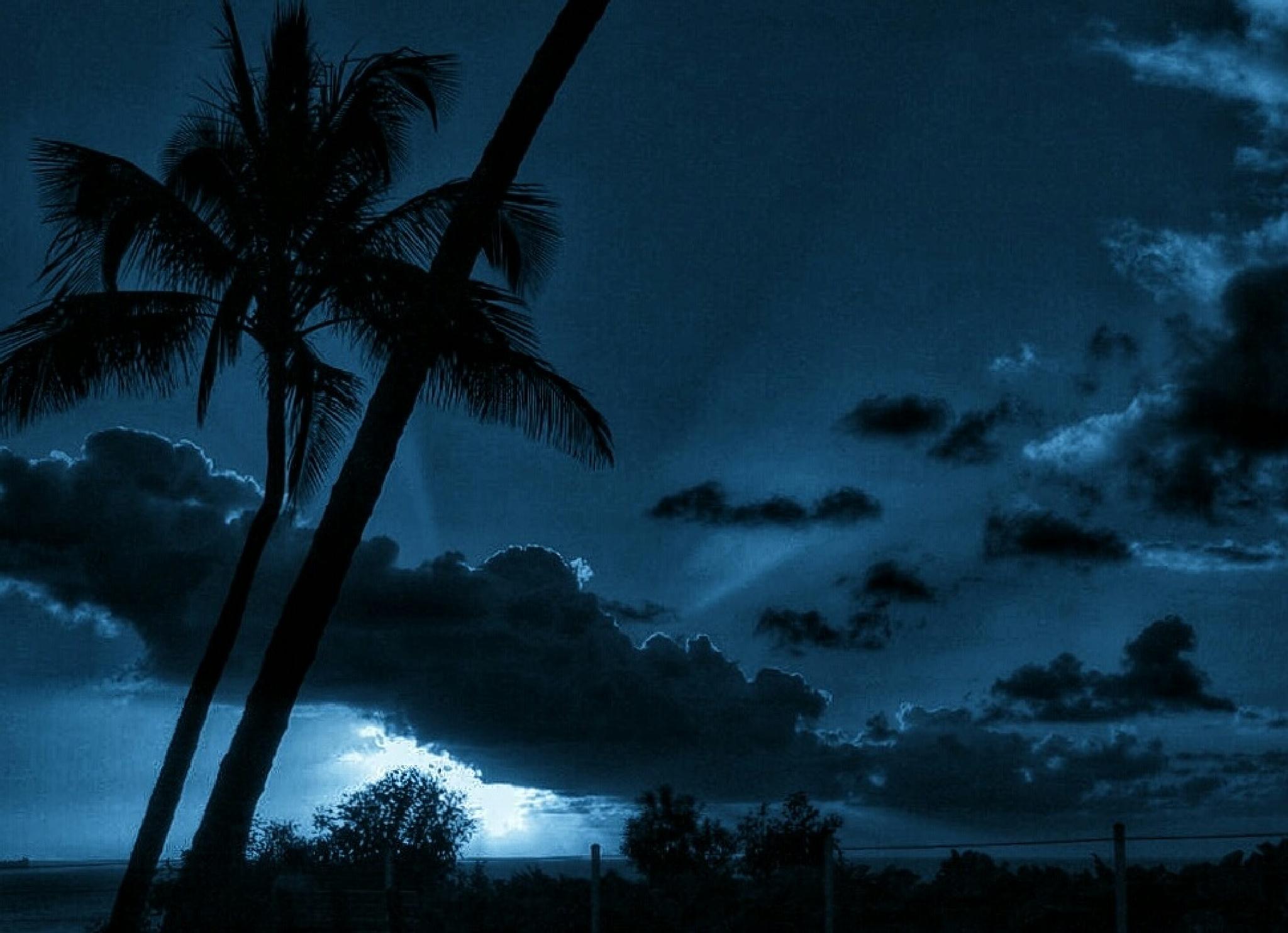 Hawaiin Blues by Ming_Bear