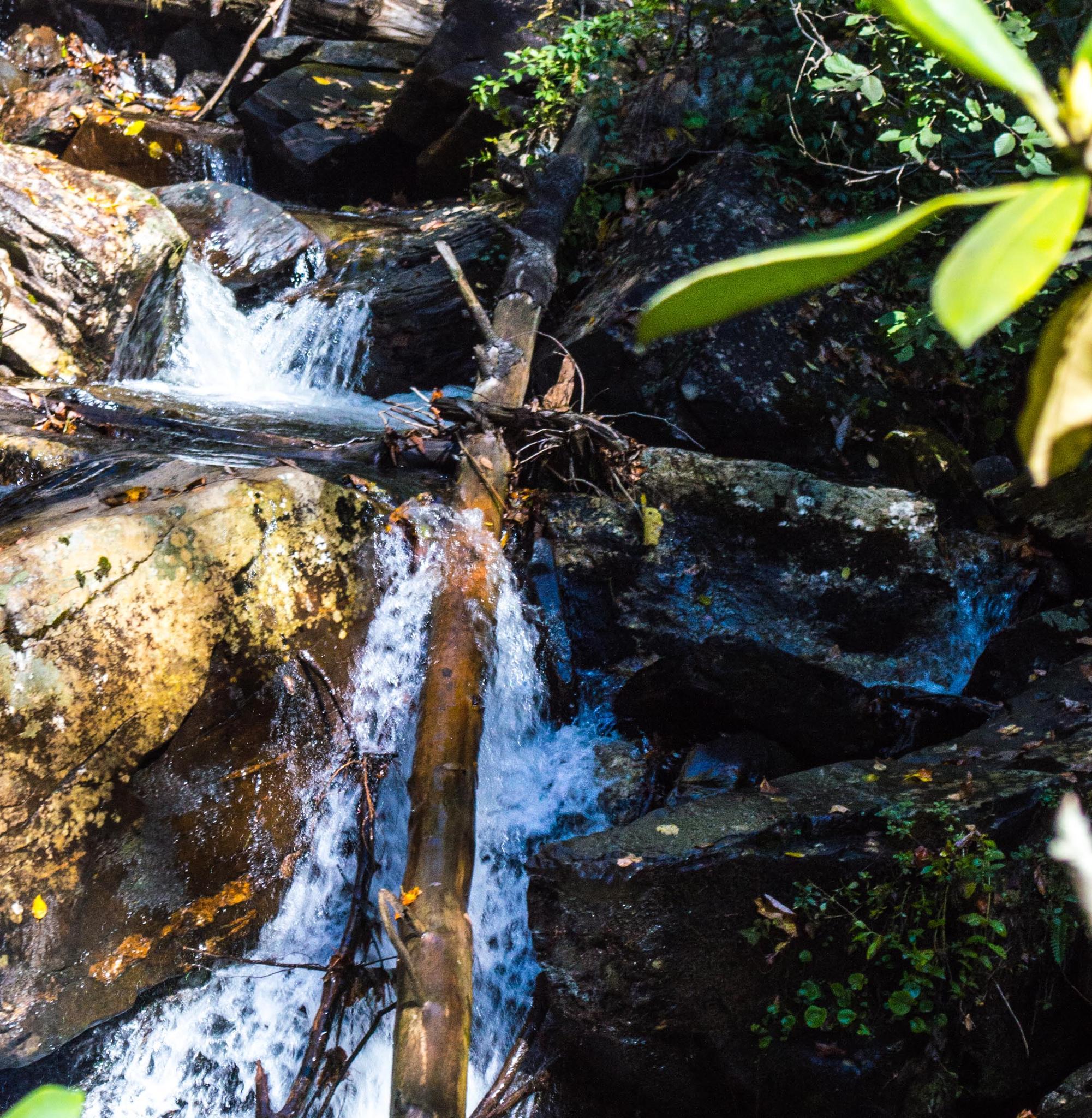 Photo in Landscape #cross #logs #streams