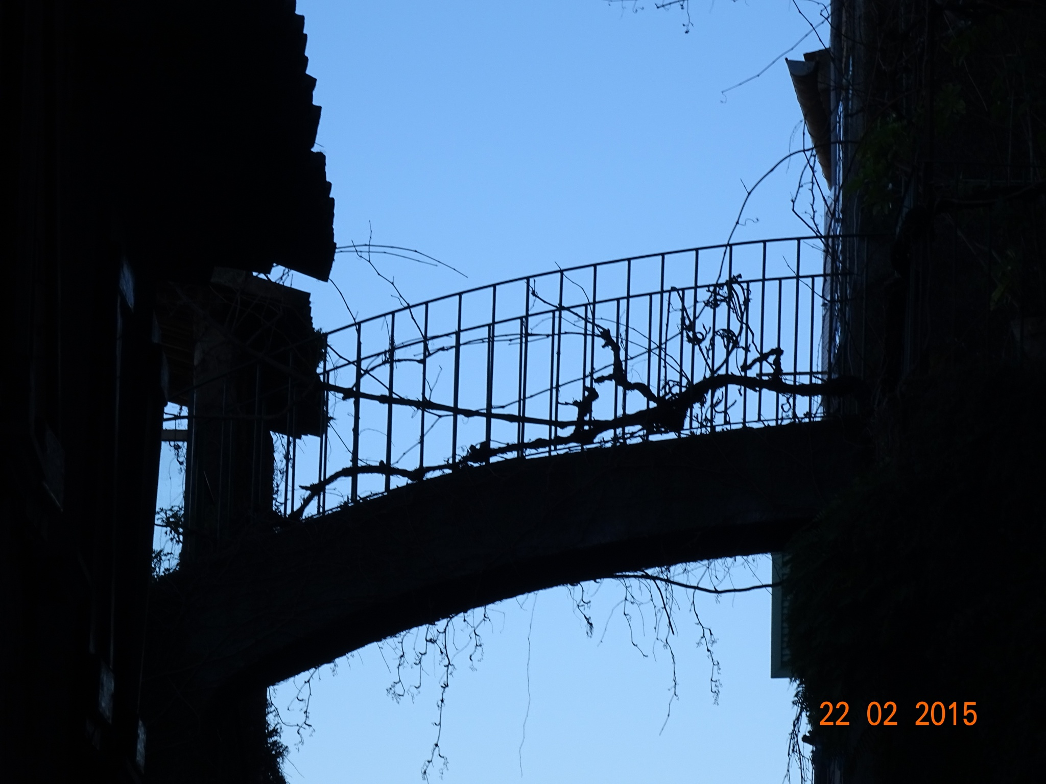 Bridge of Shadows by erol.antz