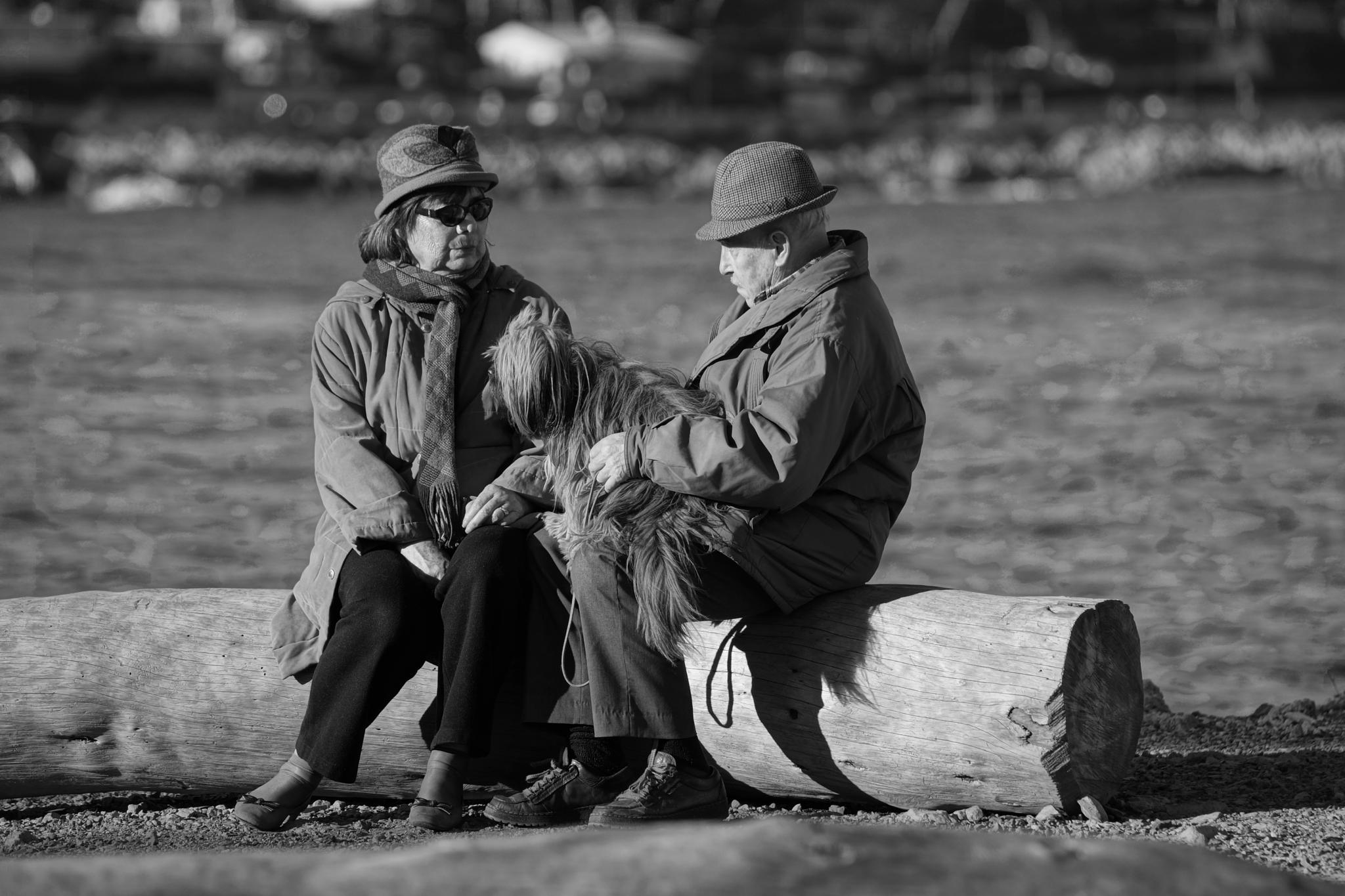 Old folks and their dog by erol.antz