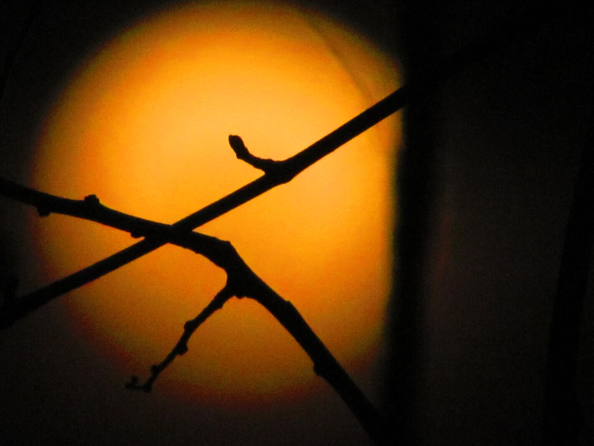 Tonight's moon-1 by jaisikand