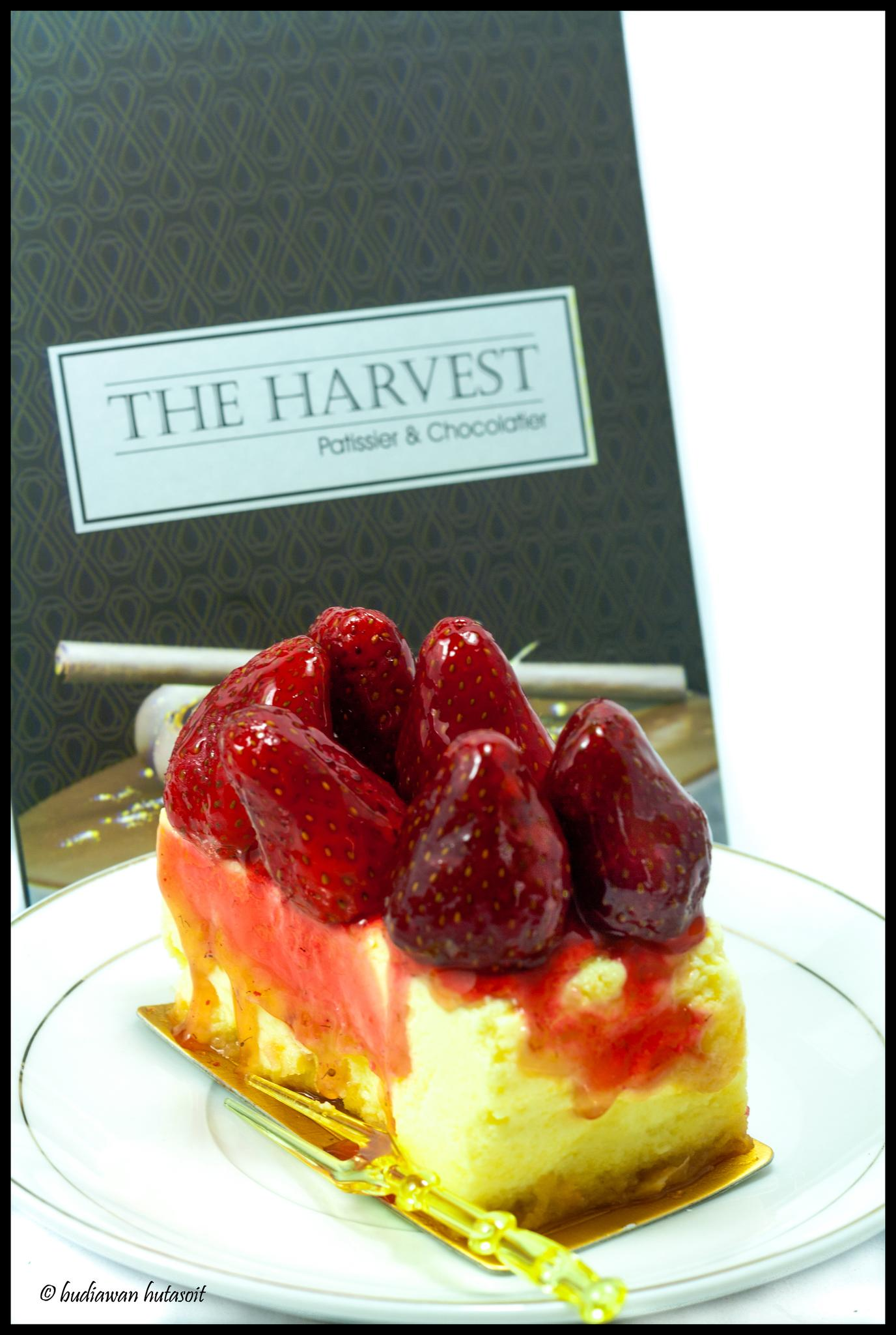 Strawberry Cheese Cake by Budiawan Hutasoit
