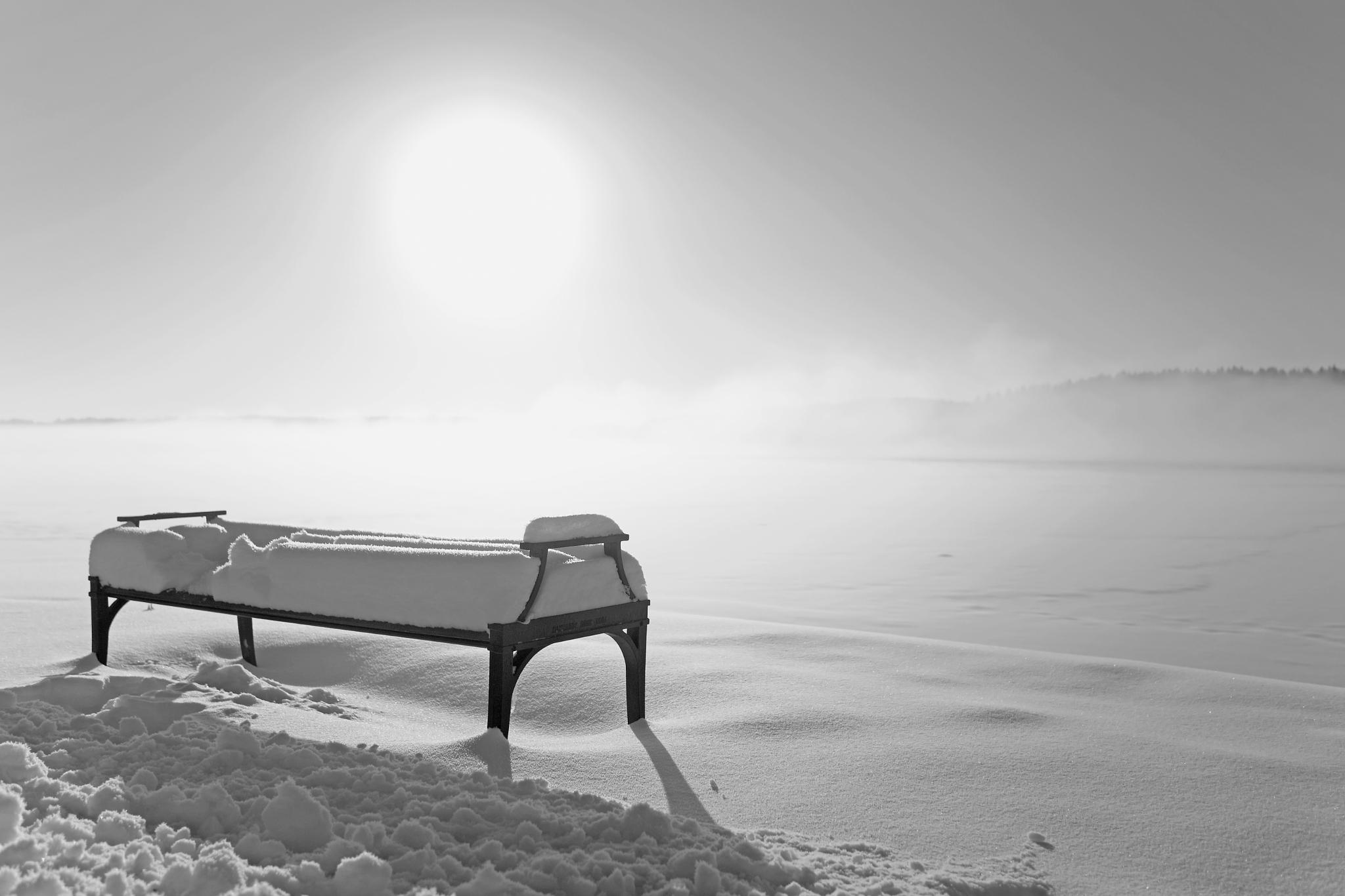 The bench together with a beautiful sunlight by SRFOTO