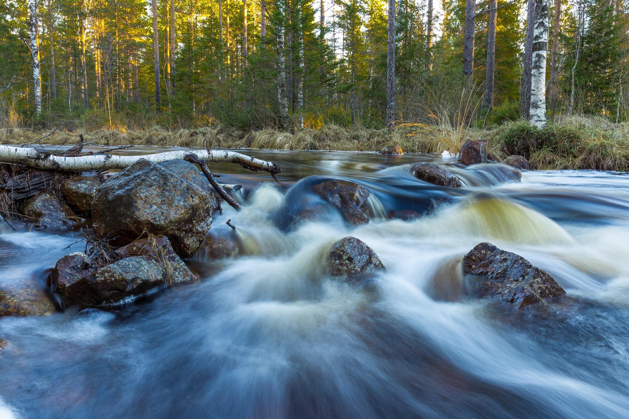 Water stream in December by SRFOTO