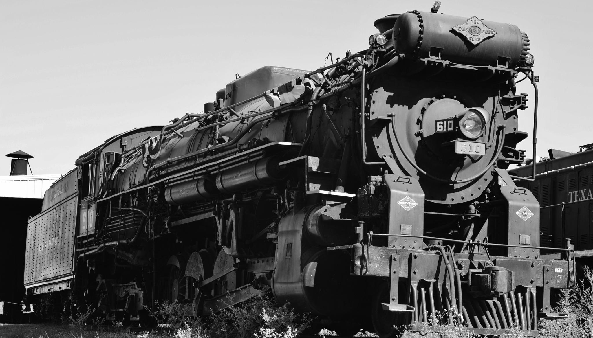 Texas State Railroad Steam Enging #610 by Scott McKay