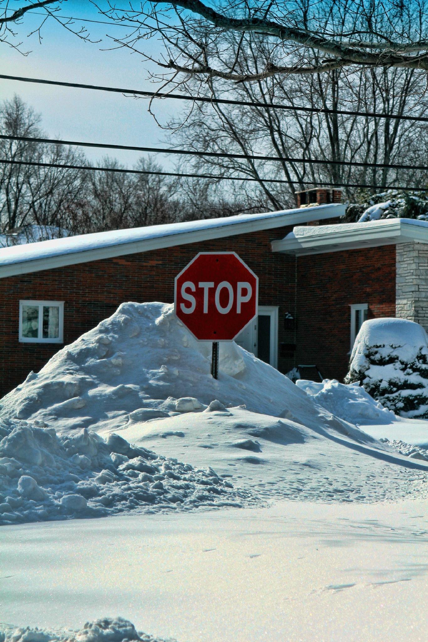 Stop sign in snow by bgobiel