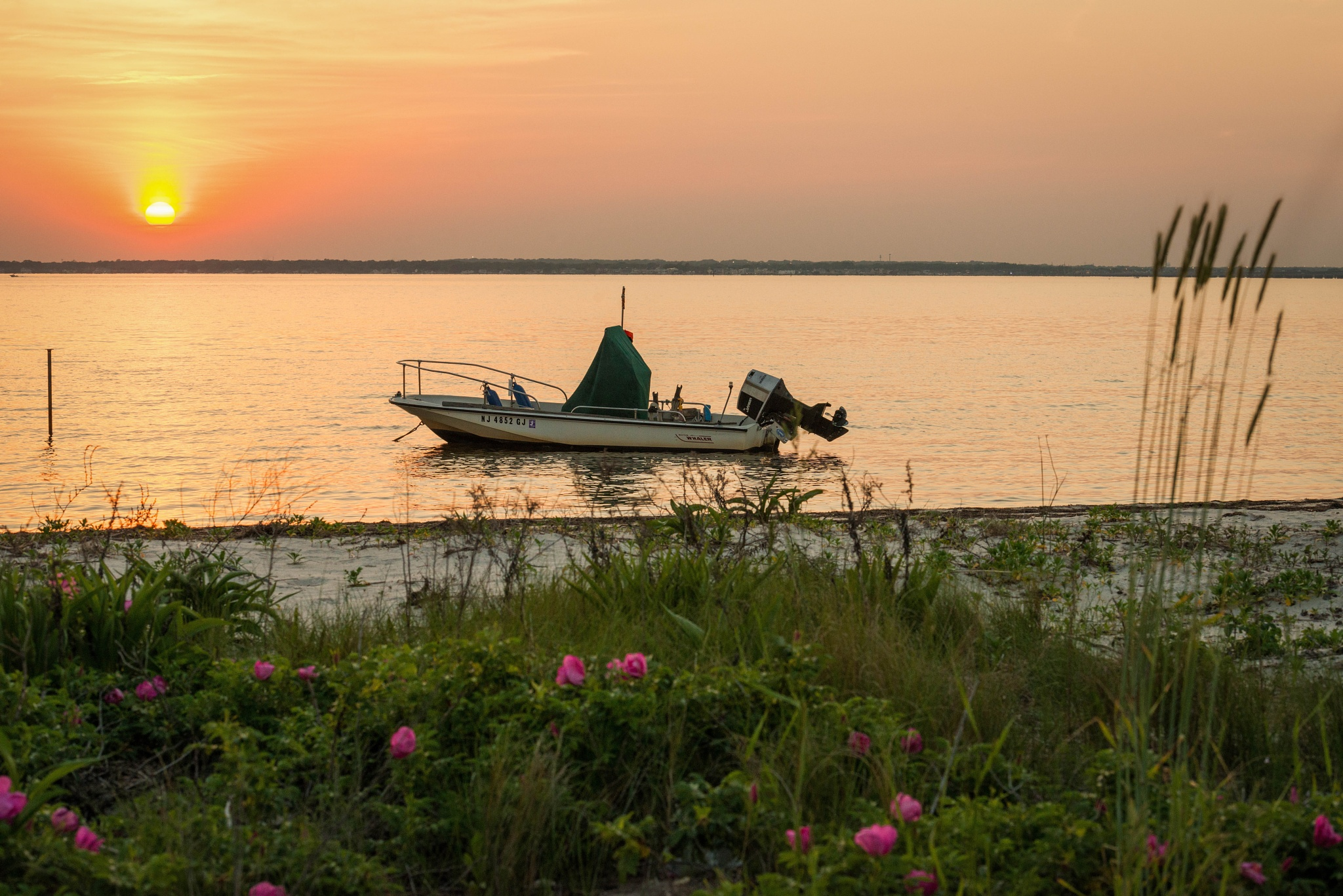 Boston Whaler Sunset by Edmund Dworakowski