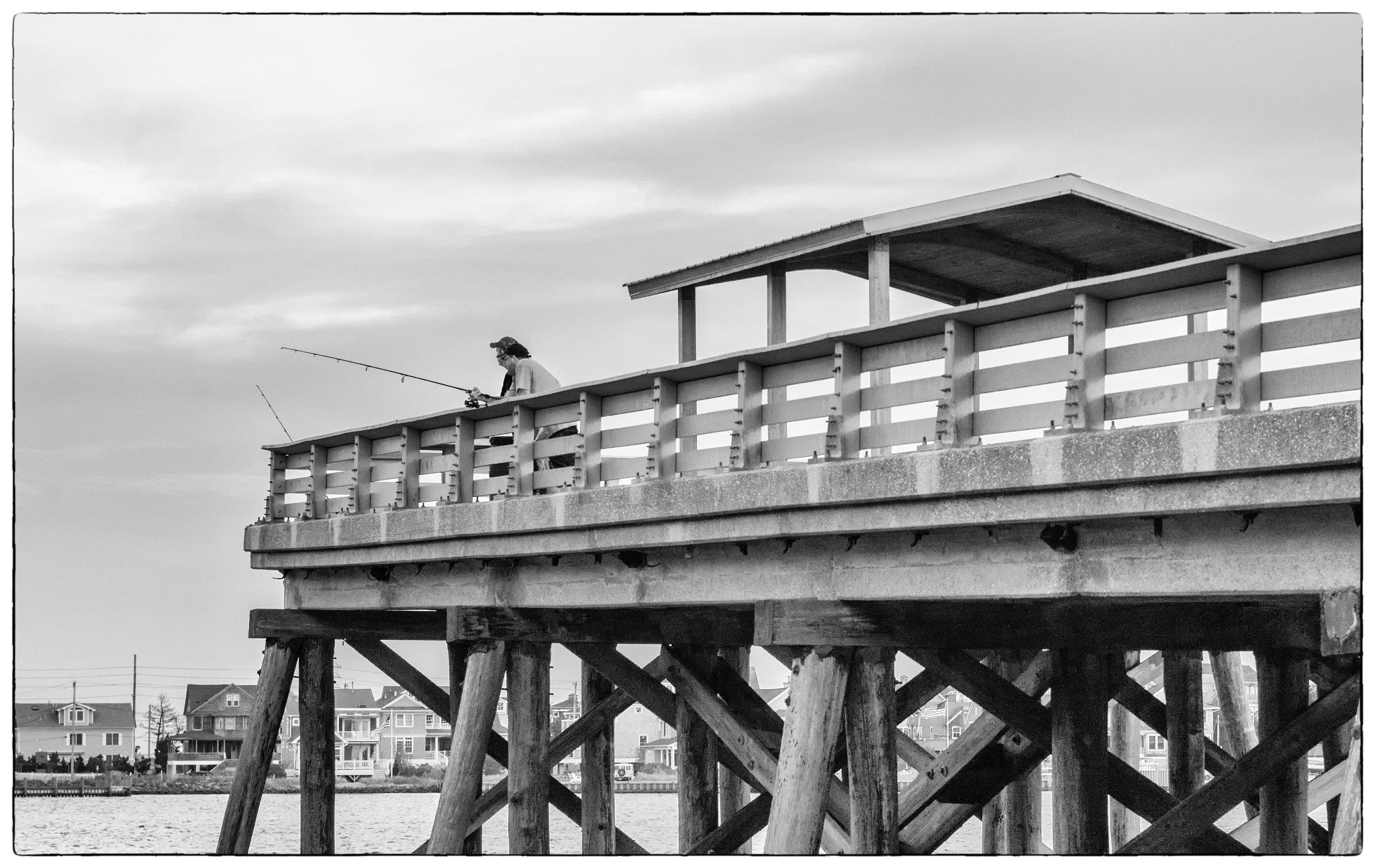 Bridge Fisherman by Edmund Dworakowski