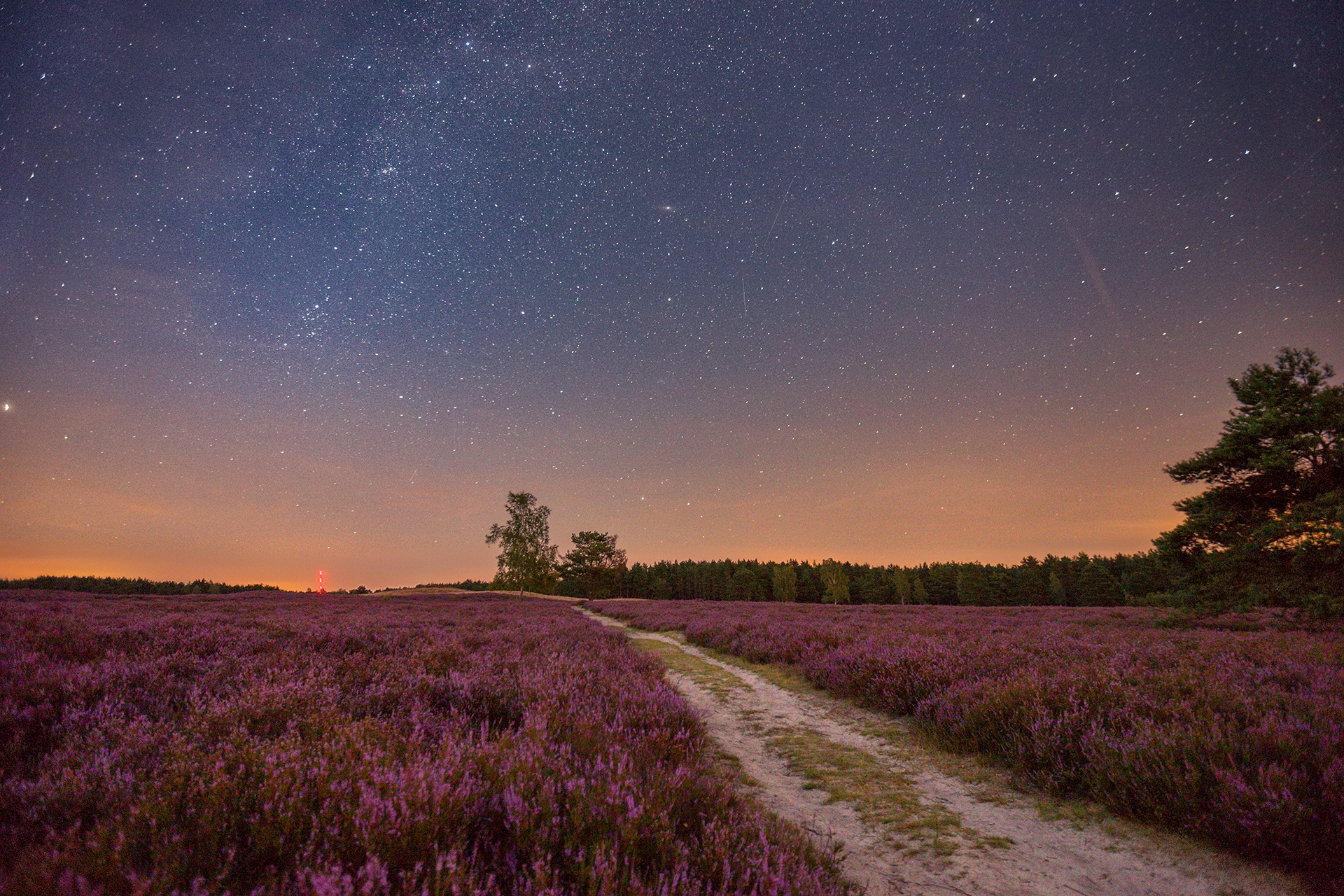 A summer night in the heathland by Maik Richter Photography