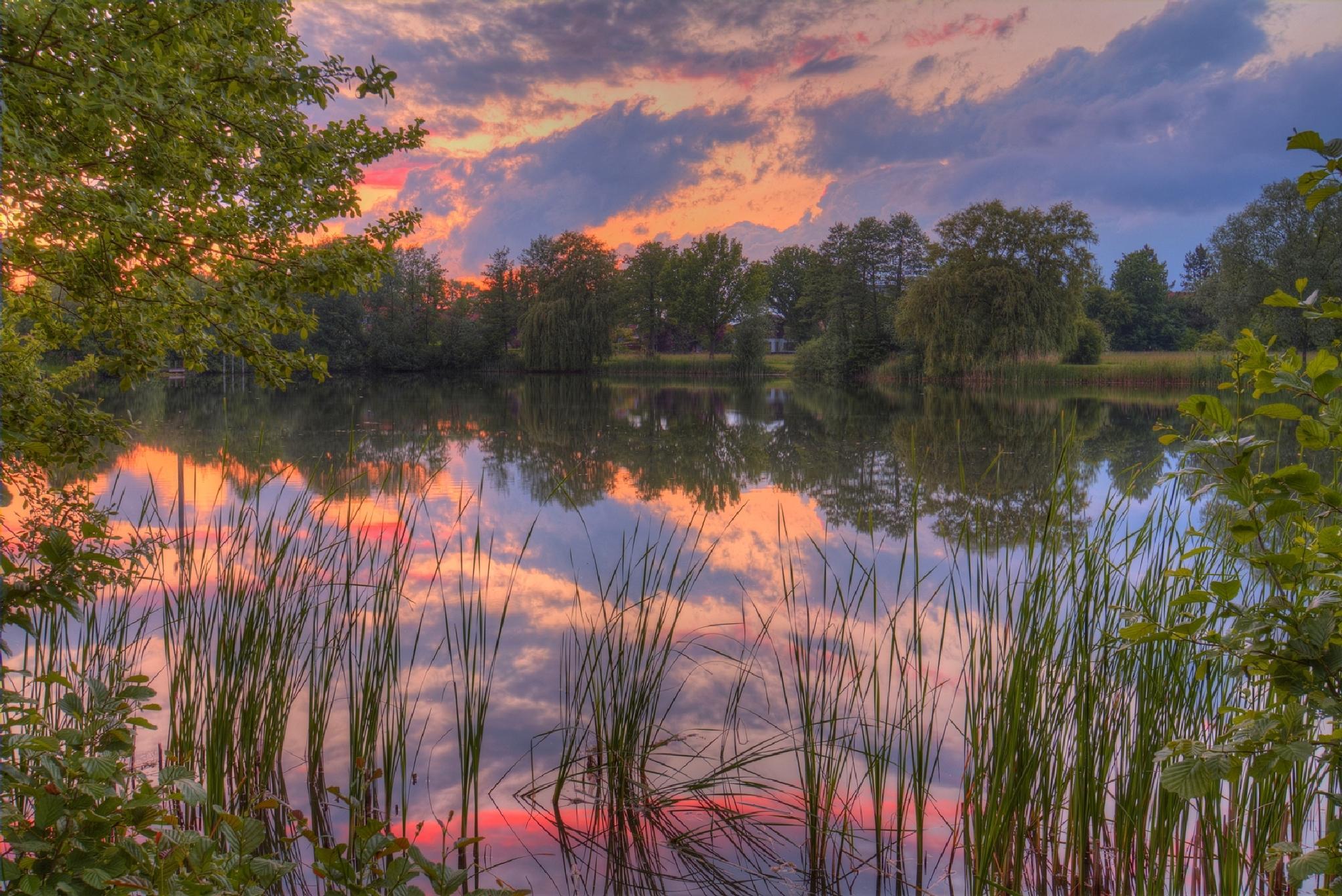 Purple sunset mood by Maik Richter Photography