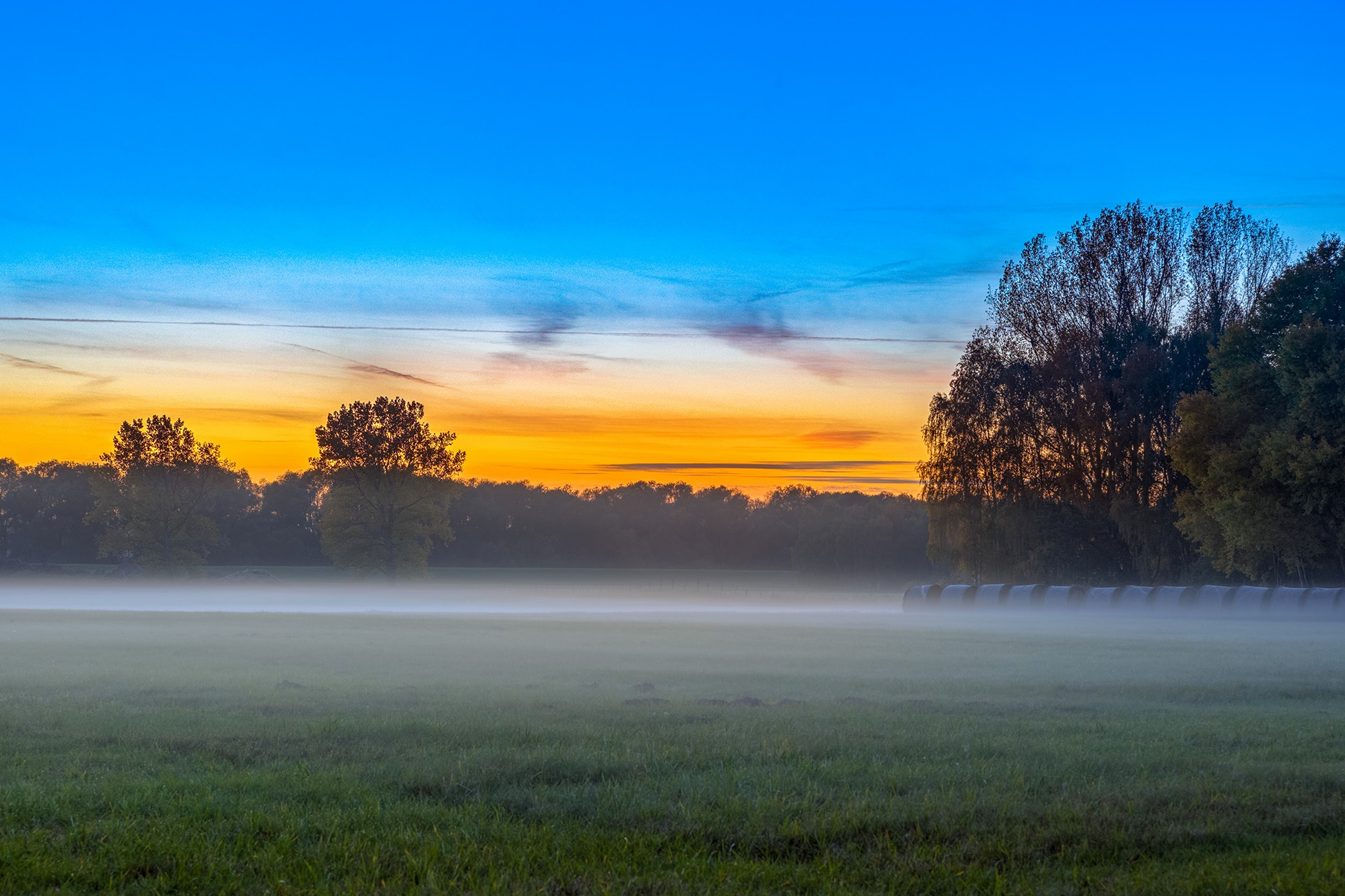 Misty Meadows by Maik Richter Photography