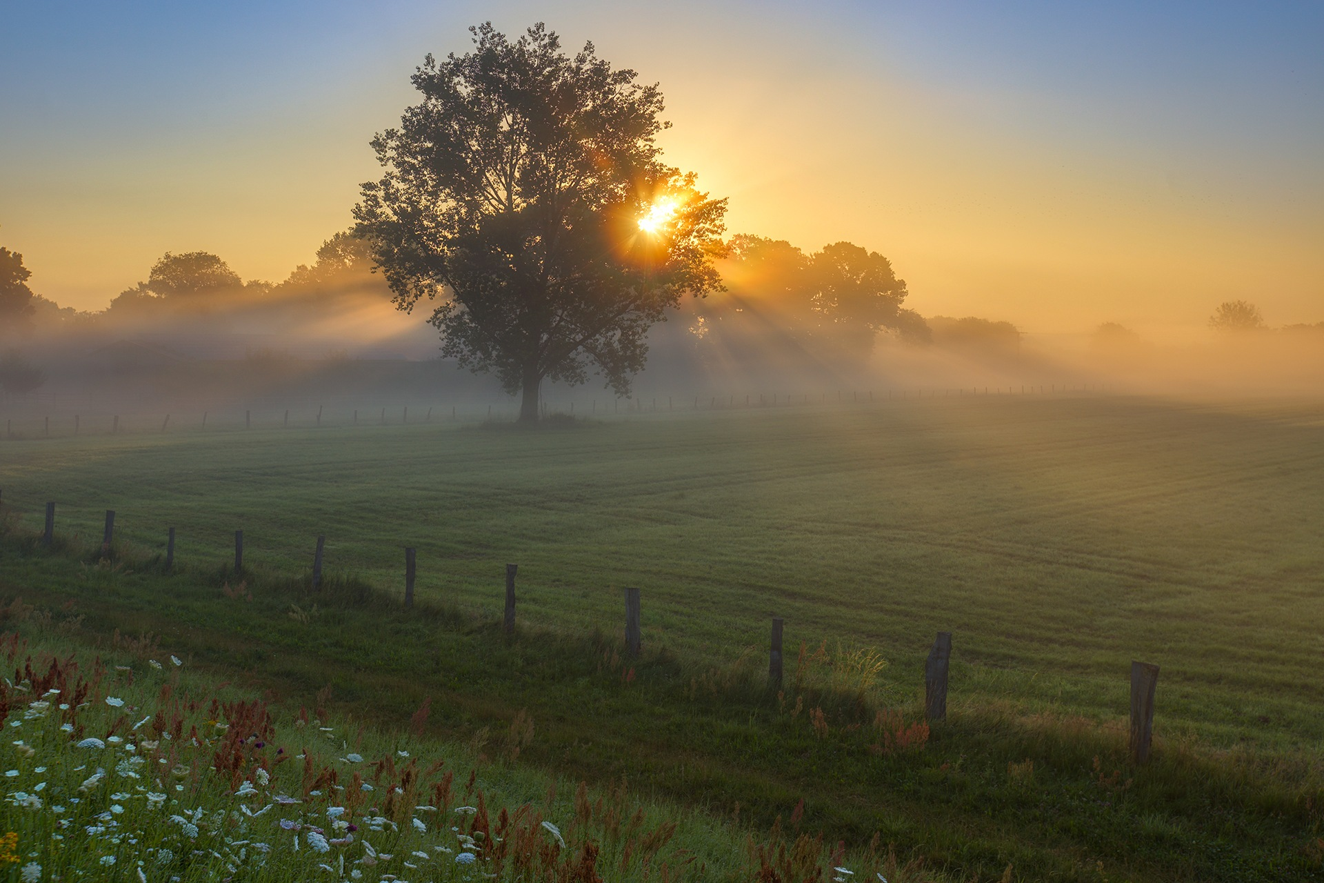 Misty morning in the countryside by Maik Richter Photography