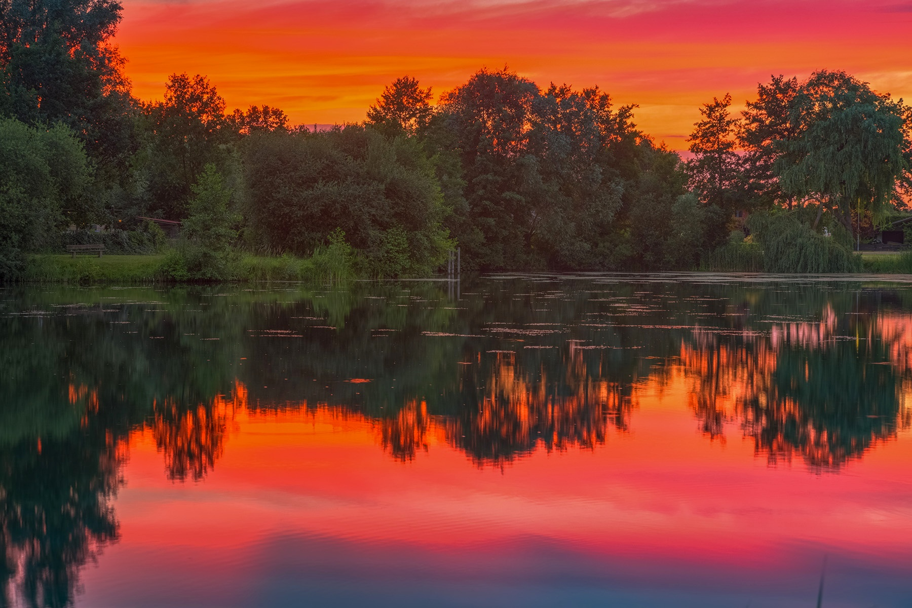 Die Farben des Sommers by Maik Richter Photography