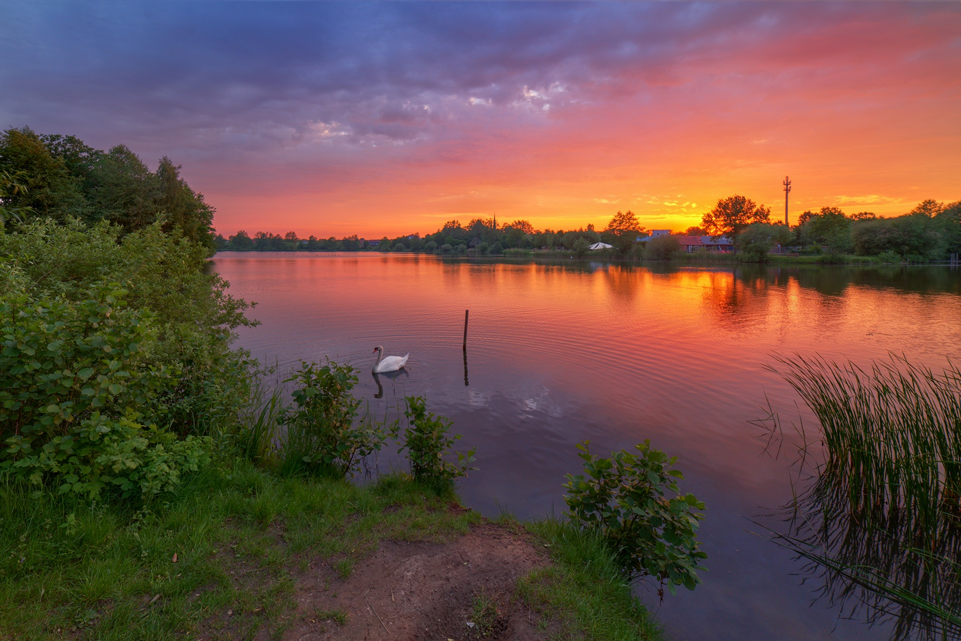 Sunset with swan by Maik Richter Photography