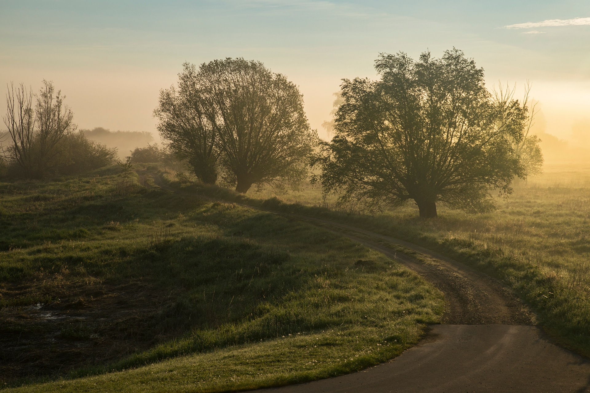 A misty path by Maik Richter Photography