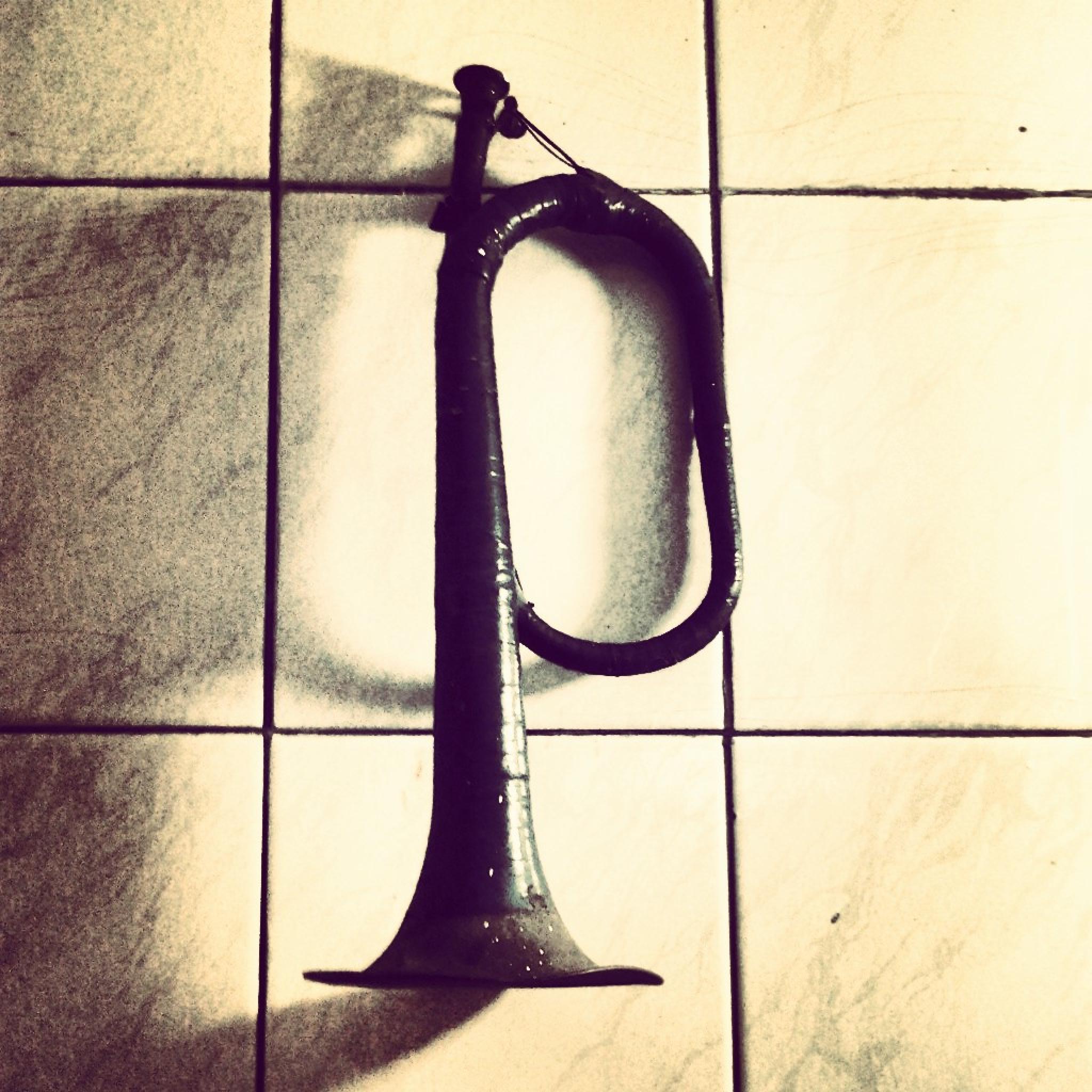 Memoirs trumpet by sarallah.akbari