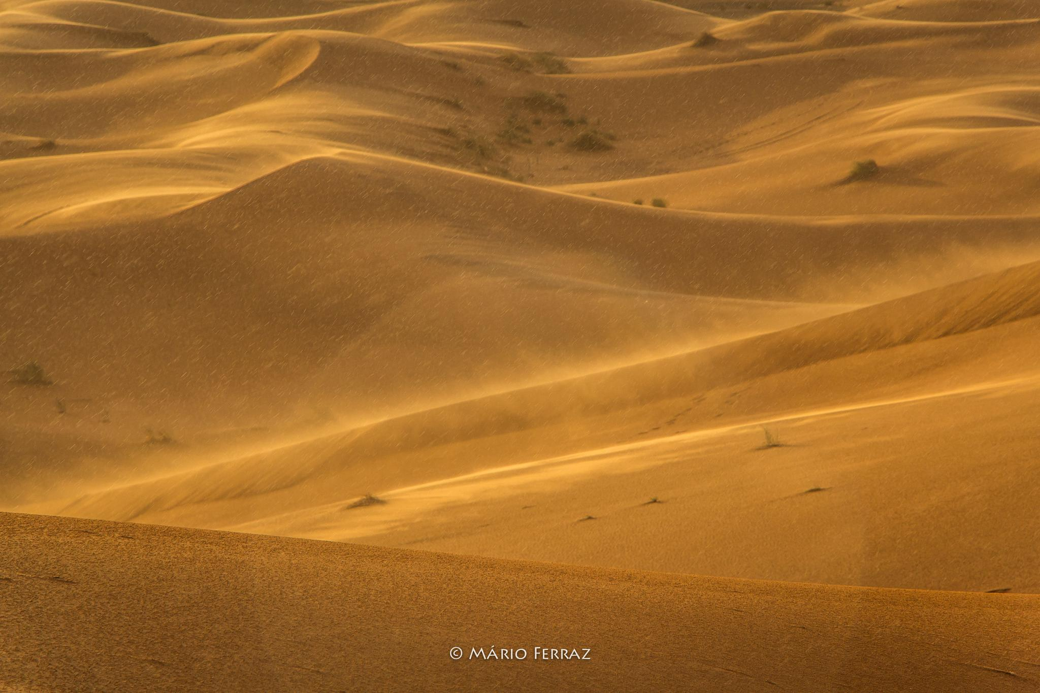 Sandstorm (beginning) by faceferraz