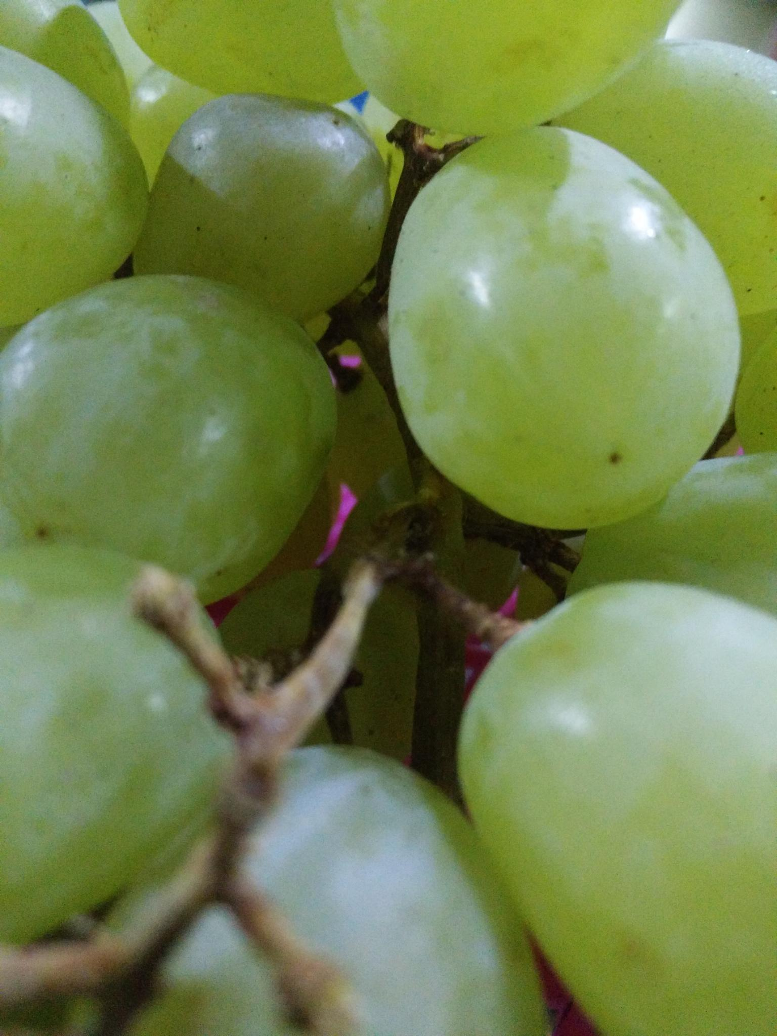 anggur by hairul Nezam