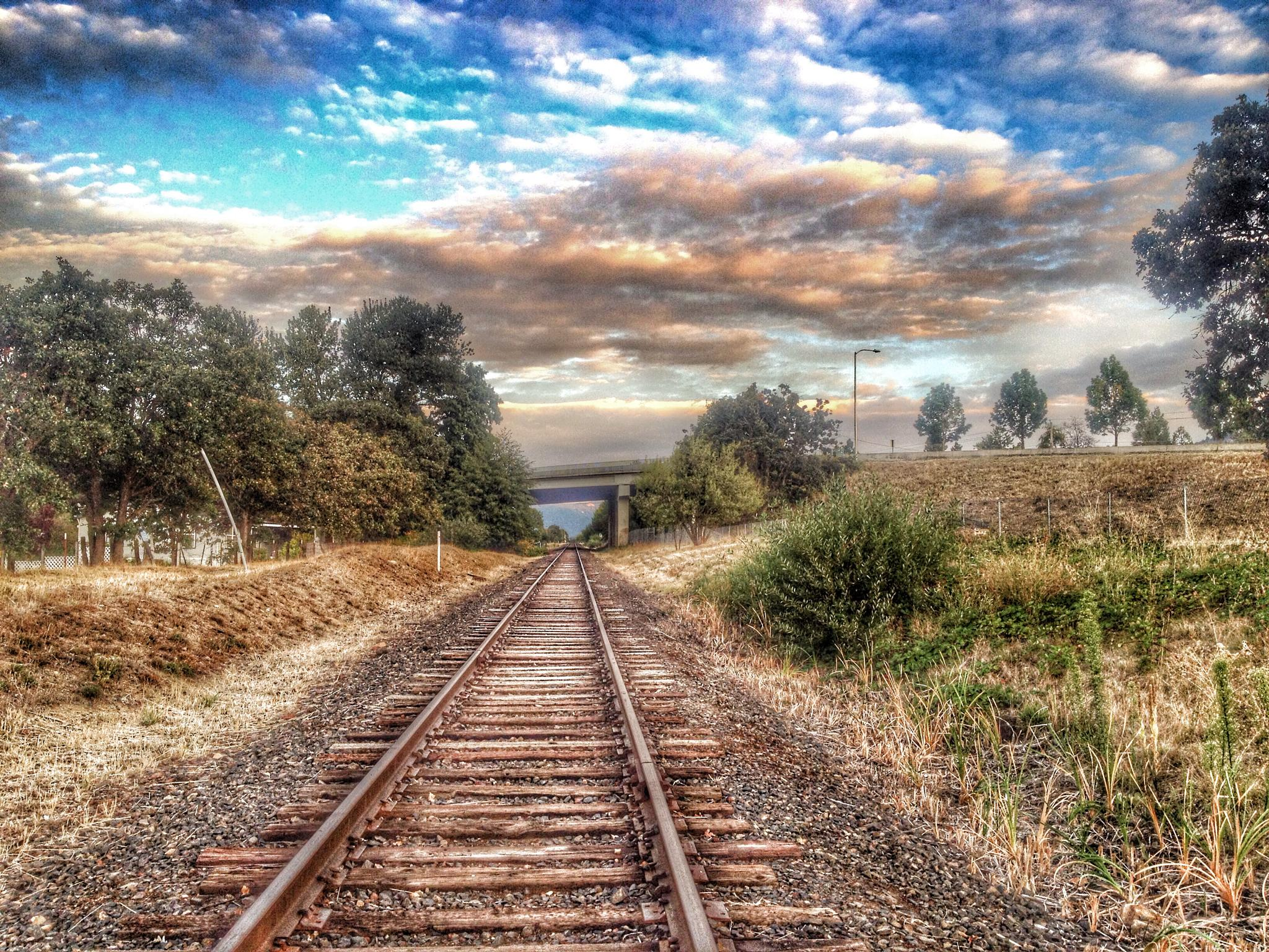 Photo in Landscape #railroad #beautiful #iron #steel #bridge #landscape #nature #trees #oregon #sky #clouds #blue #train