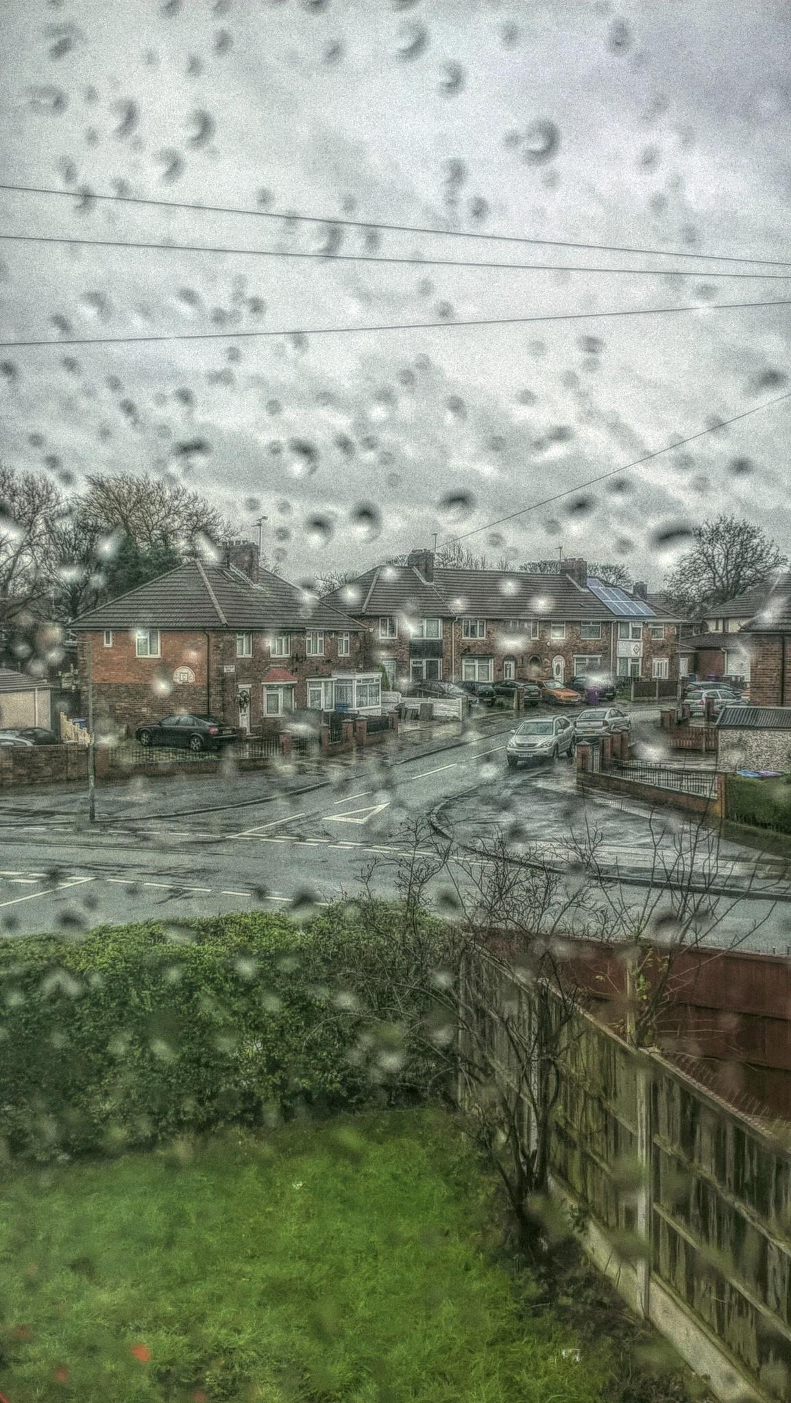 Rain by Laconic Photo