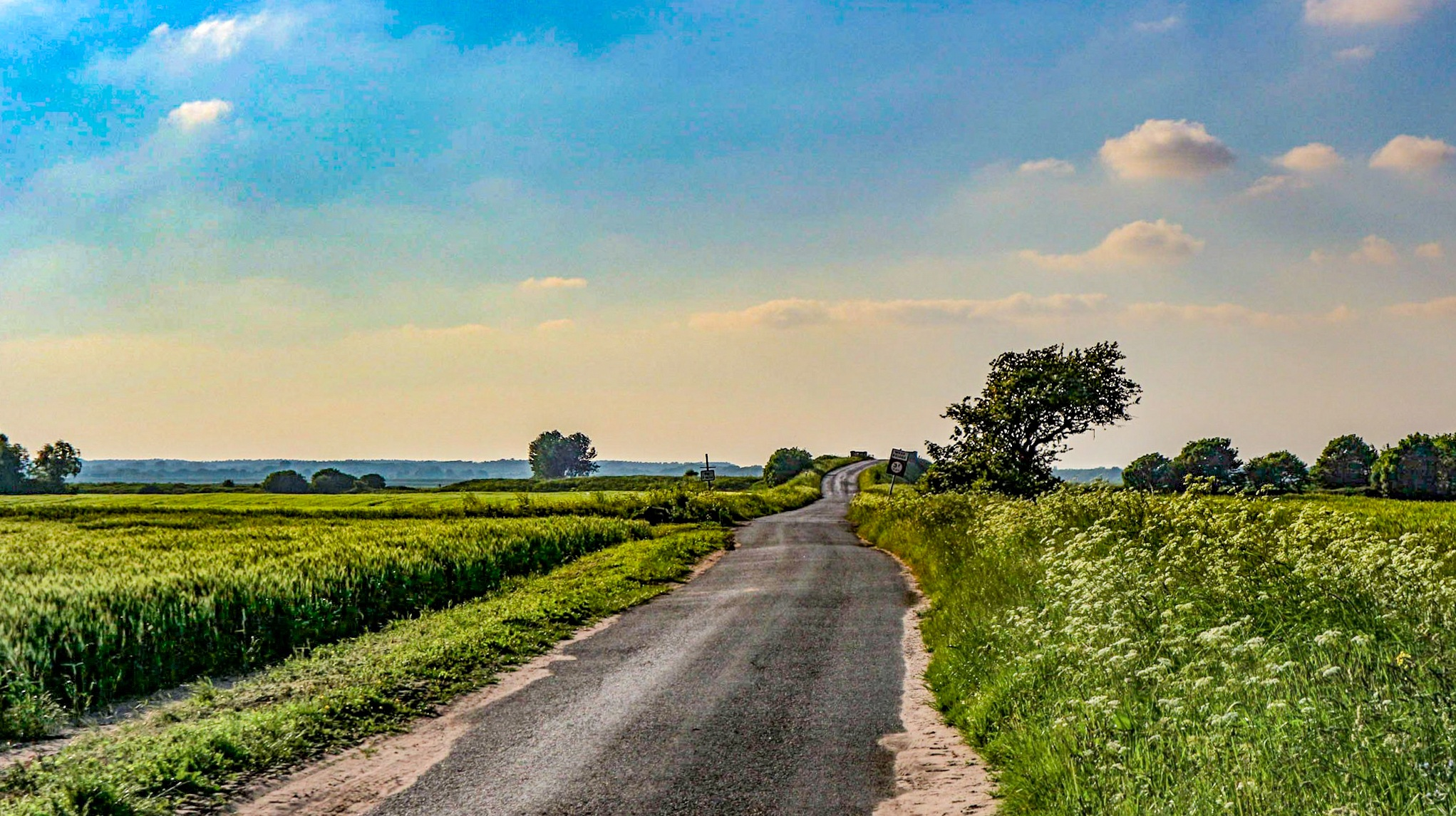 Roads less travelled by Laconic Photo