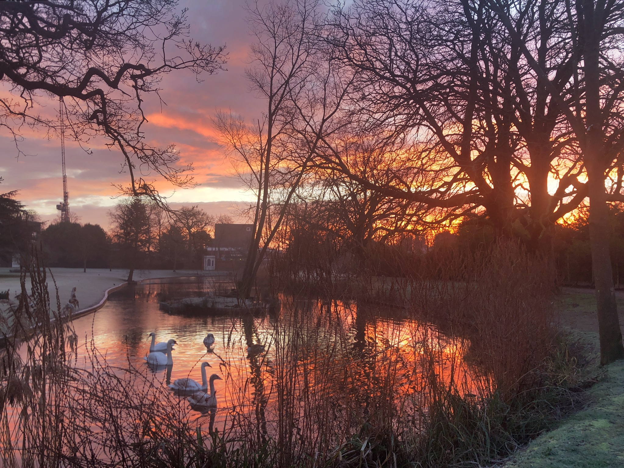 Sunrise at Langtons Gardens  by hartrockets