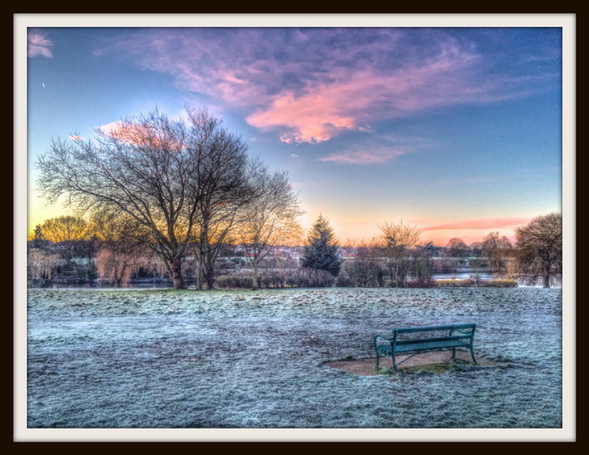 HDR Harrowlodge Park Frosty Morning by hartrockets