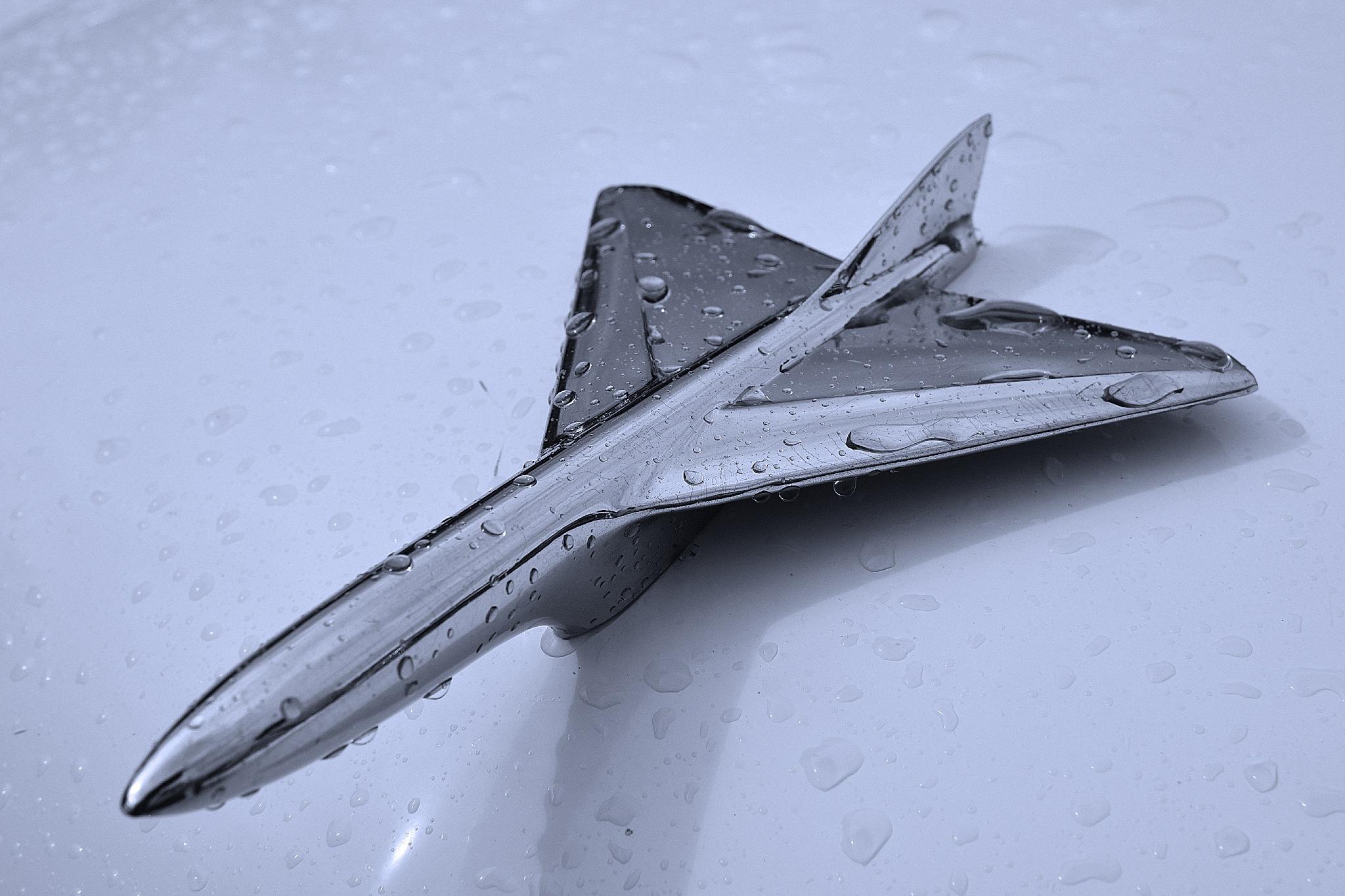 Rainy hood ornament by Lars Flodmark