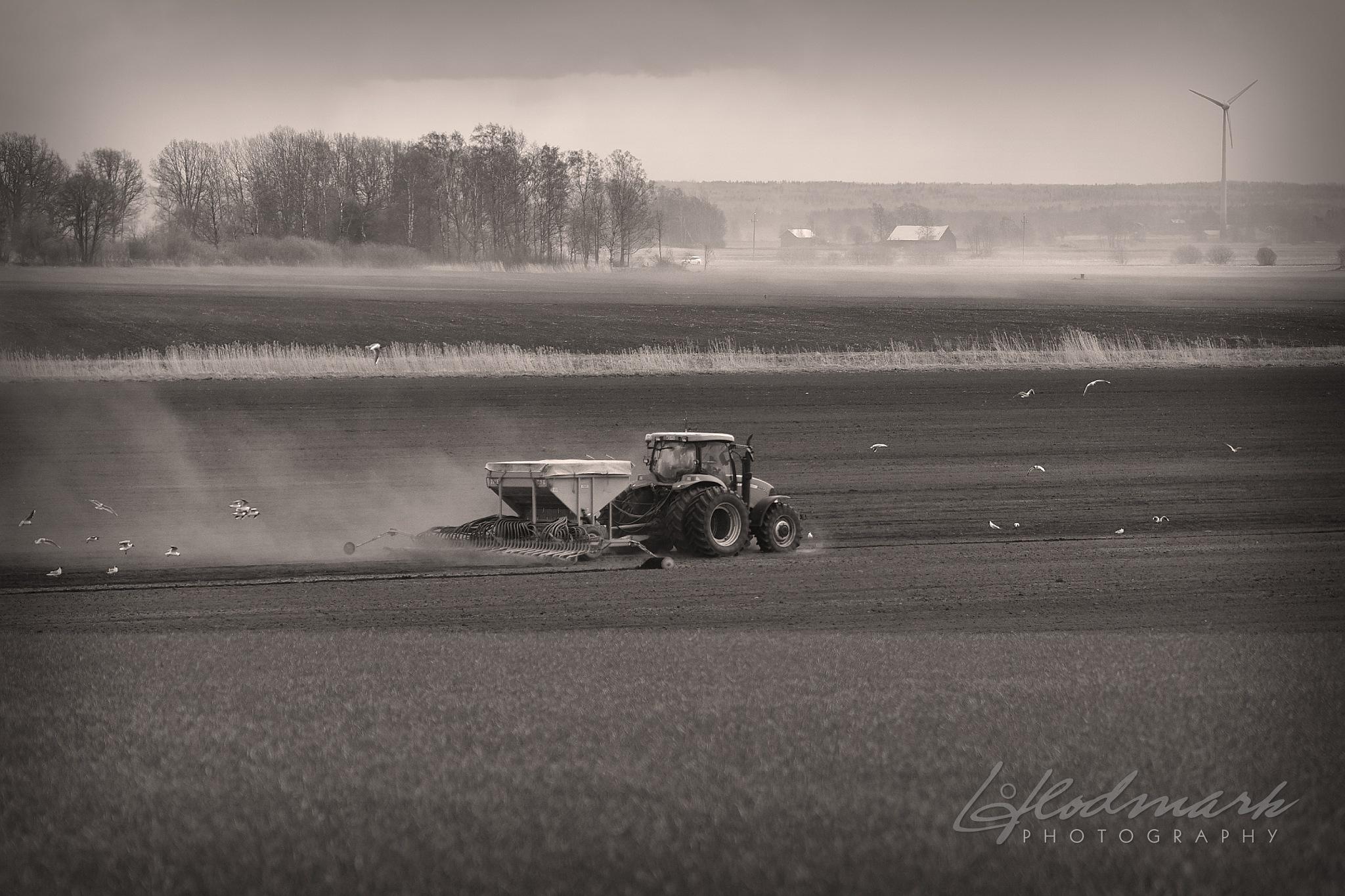 Busy farmer by Lars Flodmark