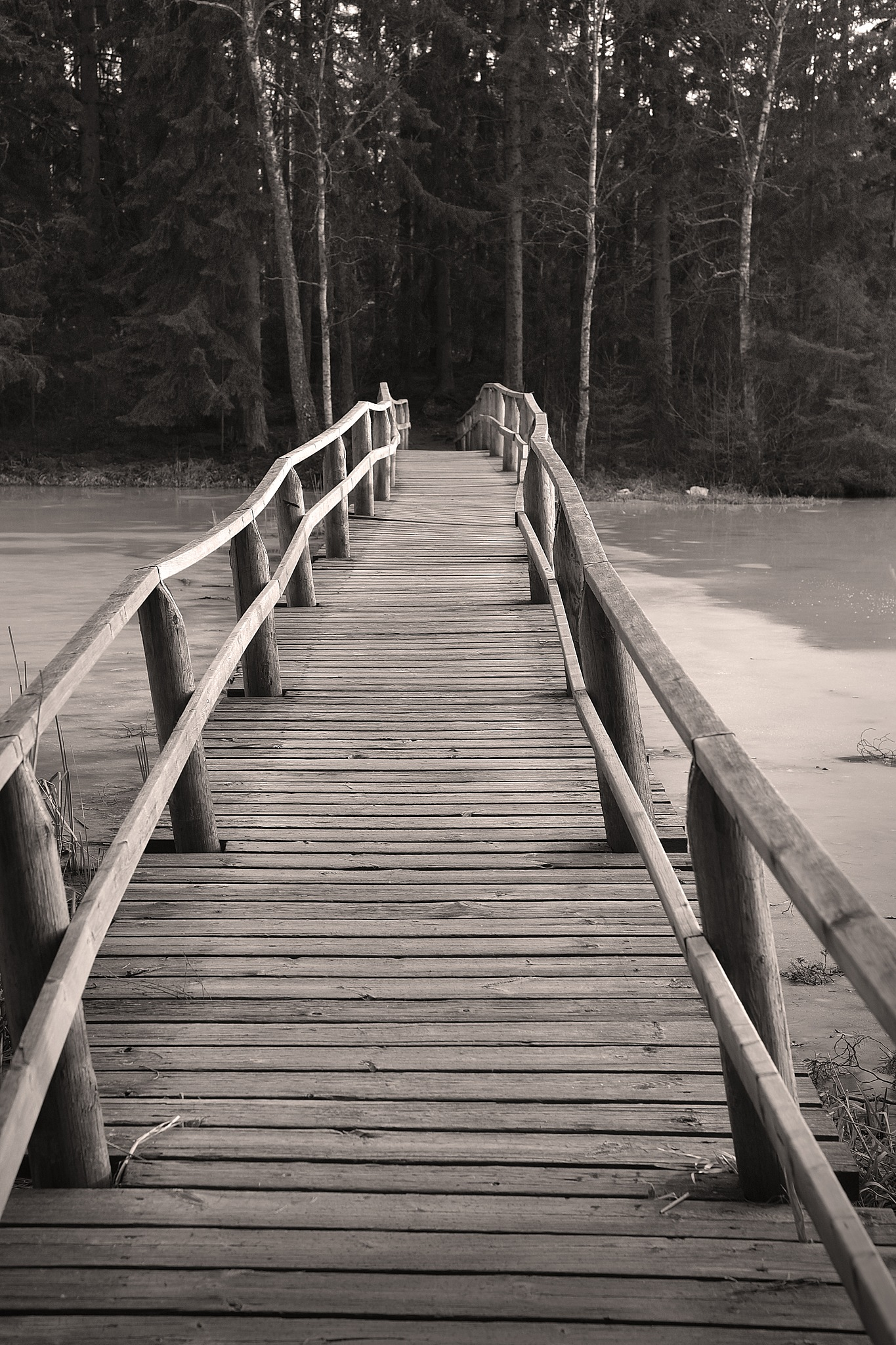 Small wooden bridge by Lars Flodmark