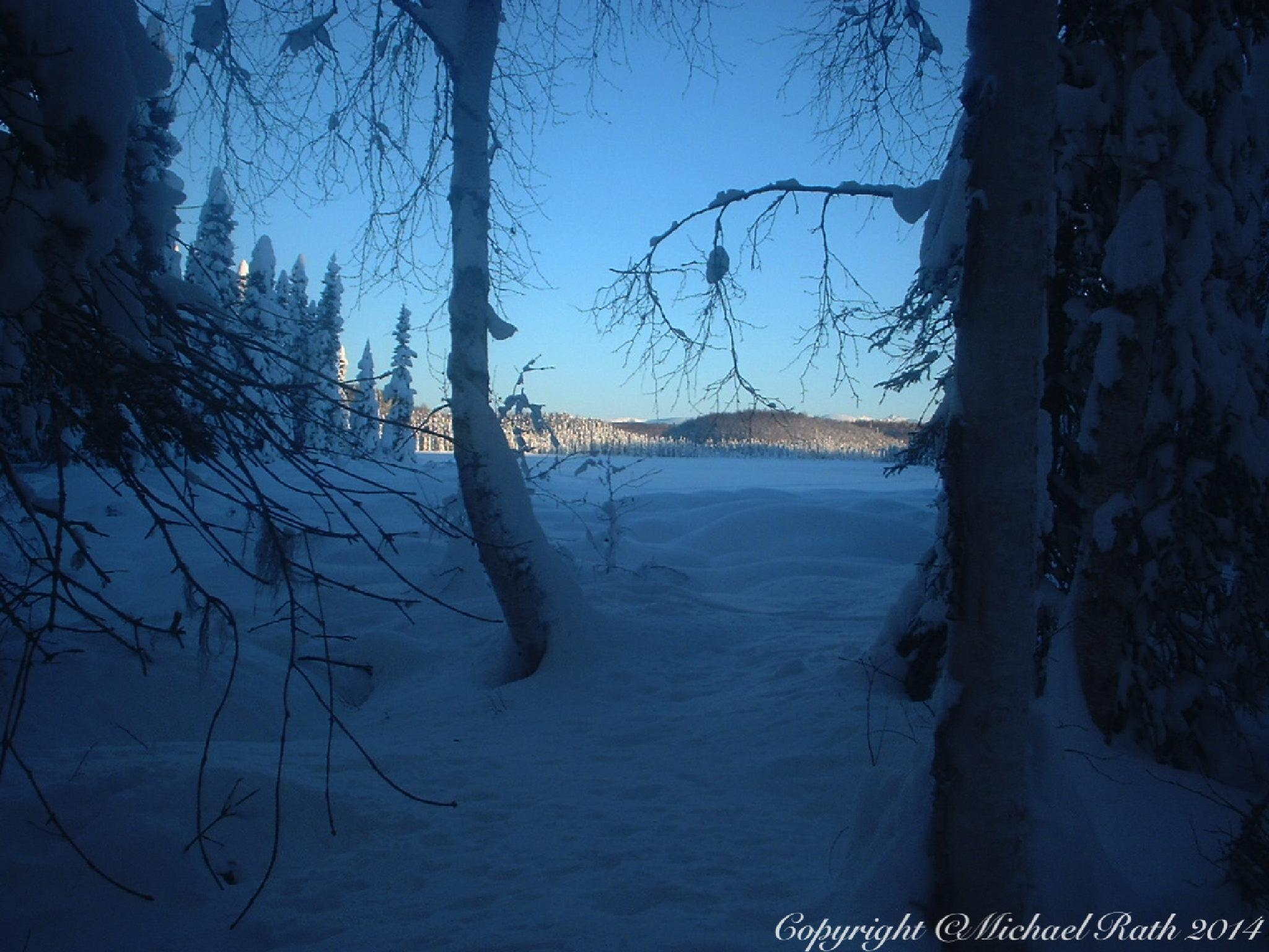 Alaska winter scene by Michael