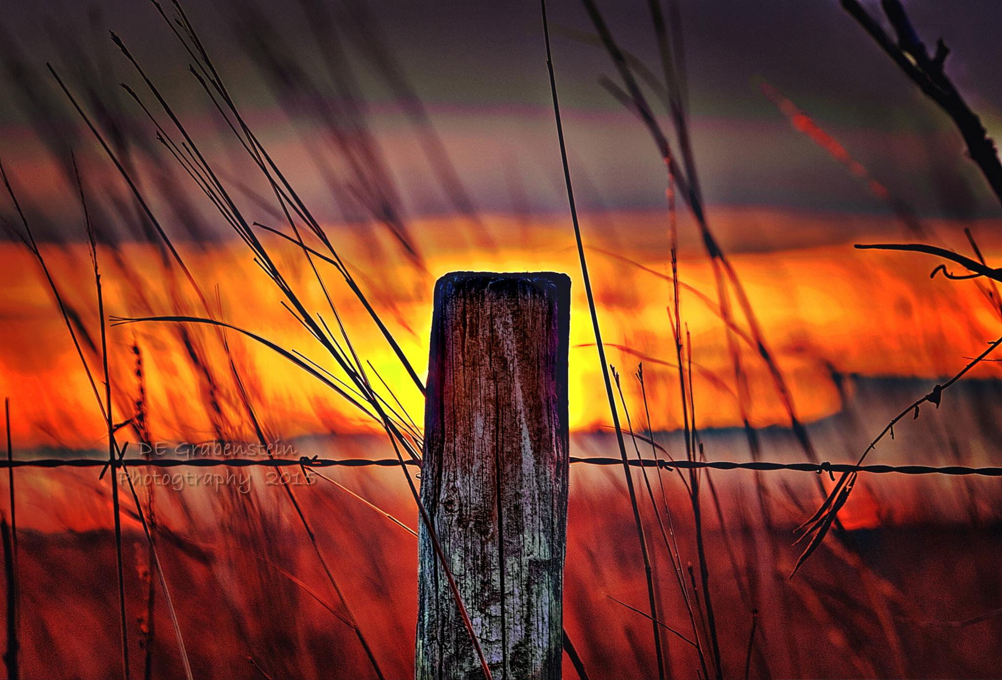 Firey Fence by derrill.grabenstein