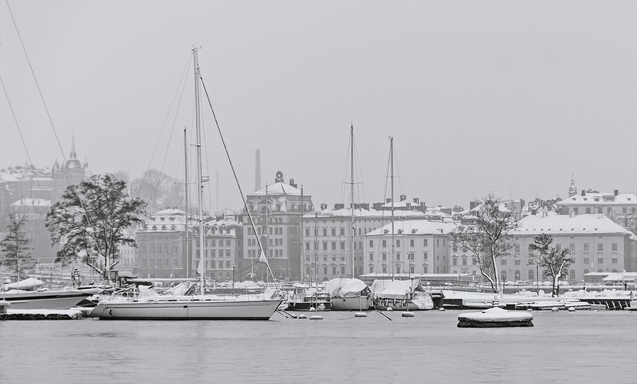 Stockholm, Snow, Cloudy by romus.ramstrom