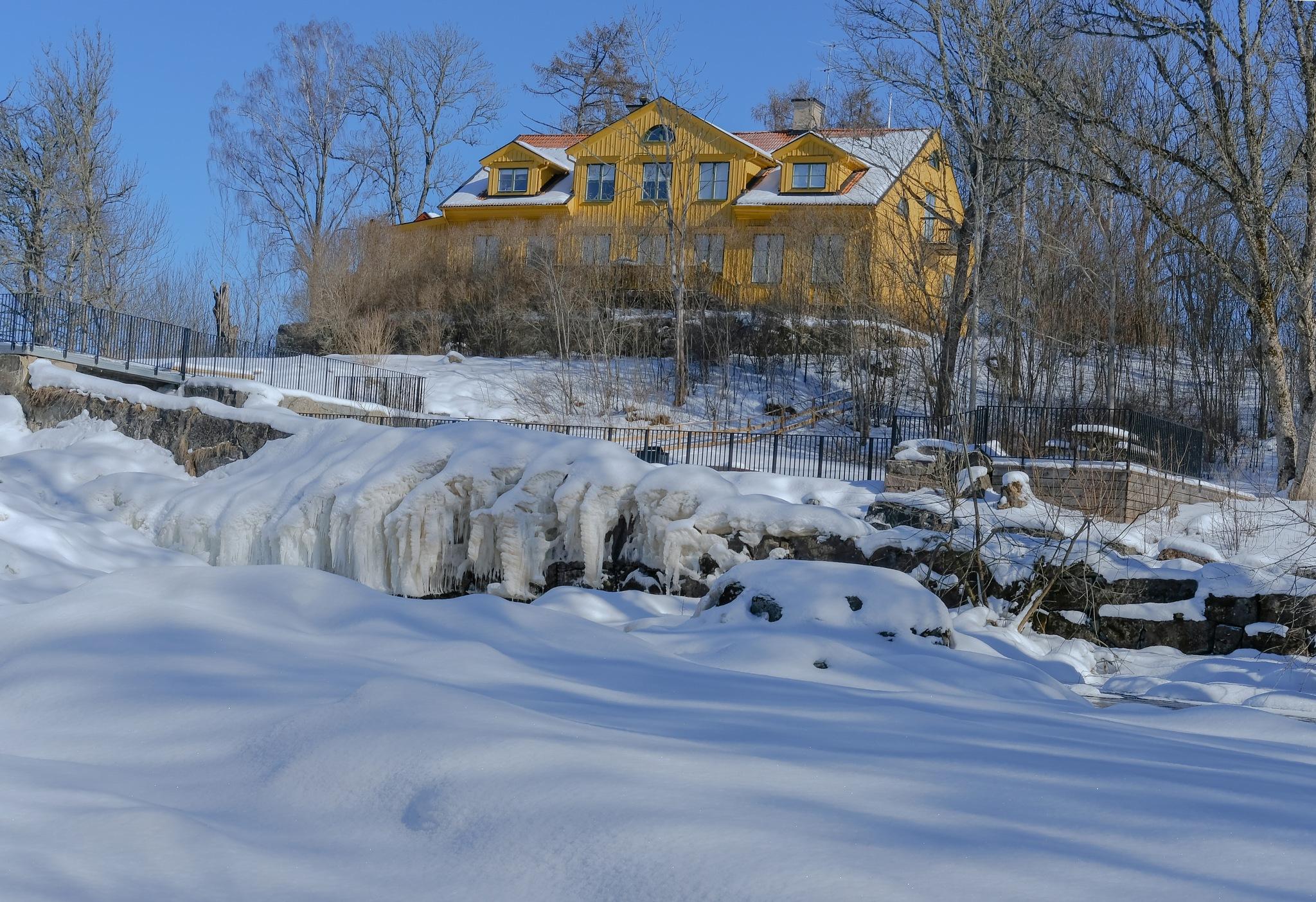 winter by larserik.keding